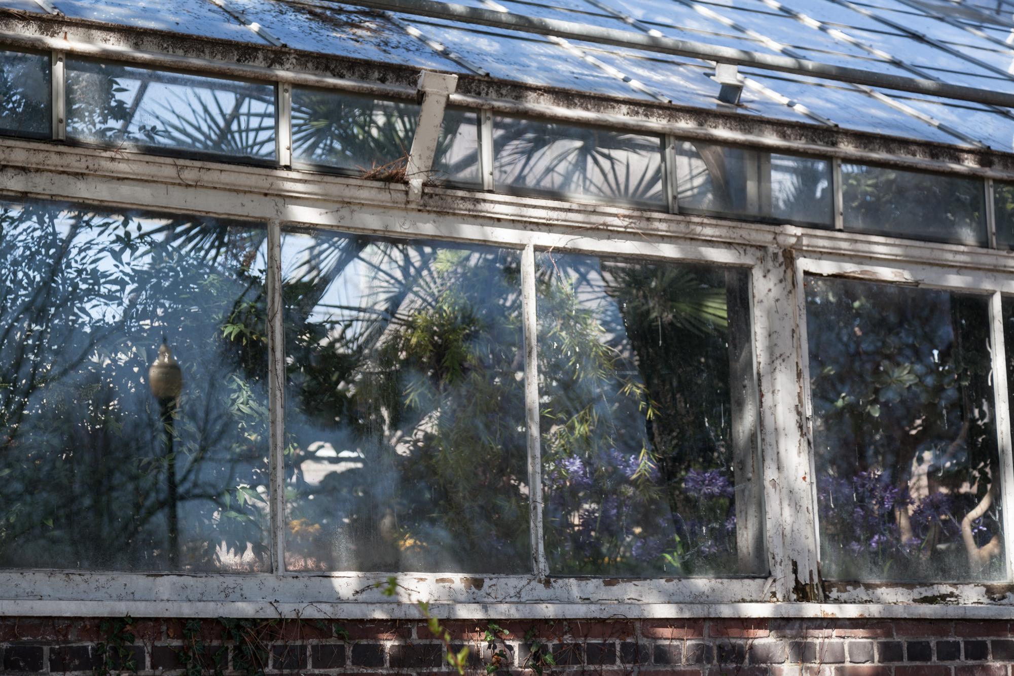 Allan-Garden-Conservatory-Homestead-Brooklyn.jpg
