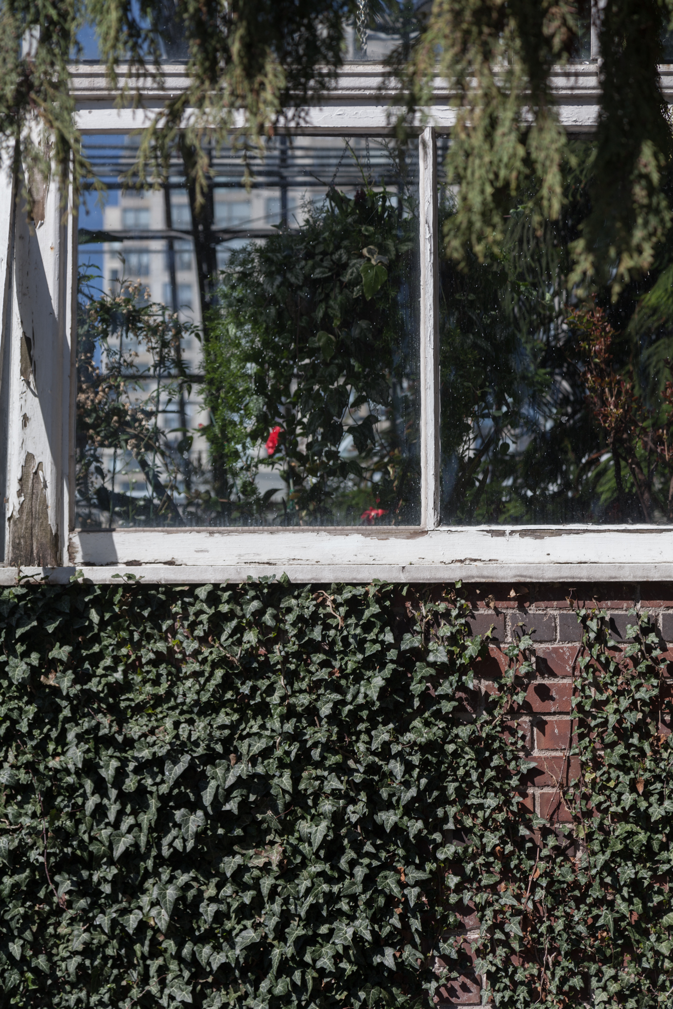 Allan-Garden-Conservatory-outside.jpg