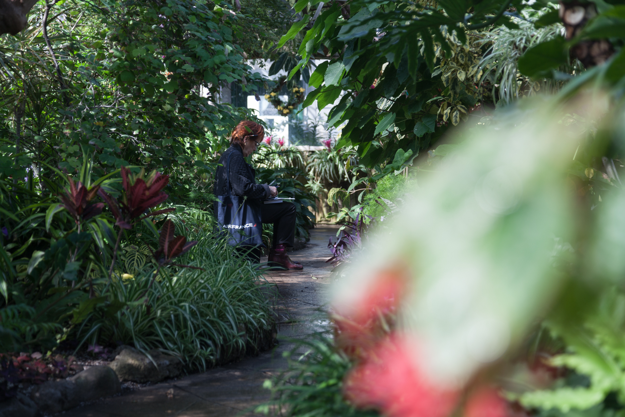 A woman draws flowers at the Allan Garden Conservatory.