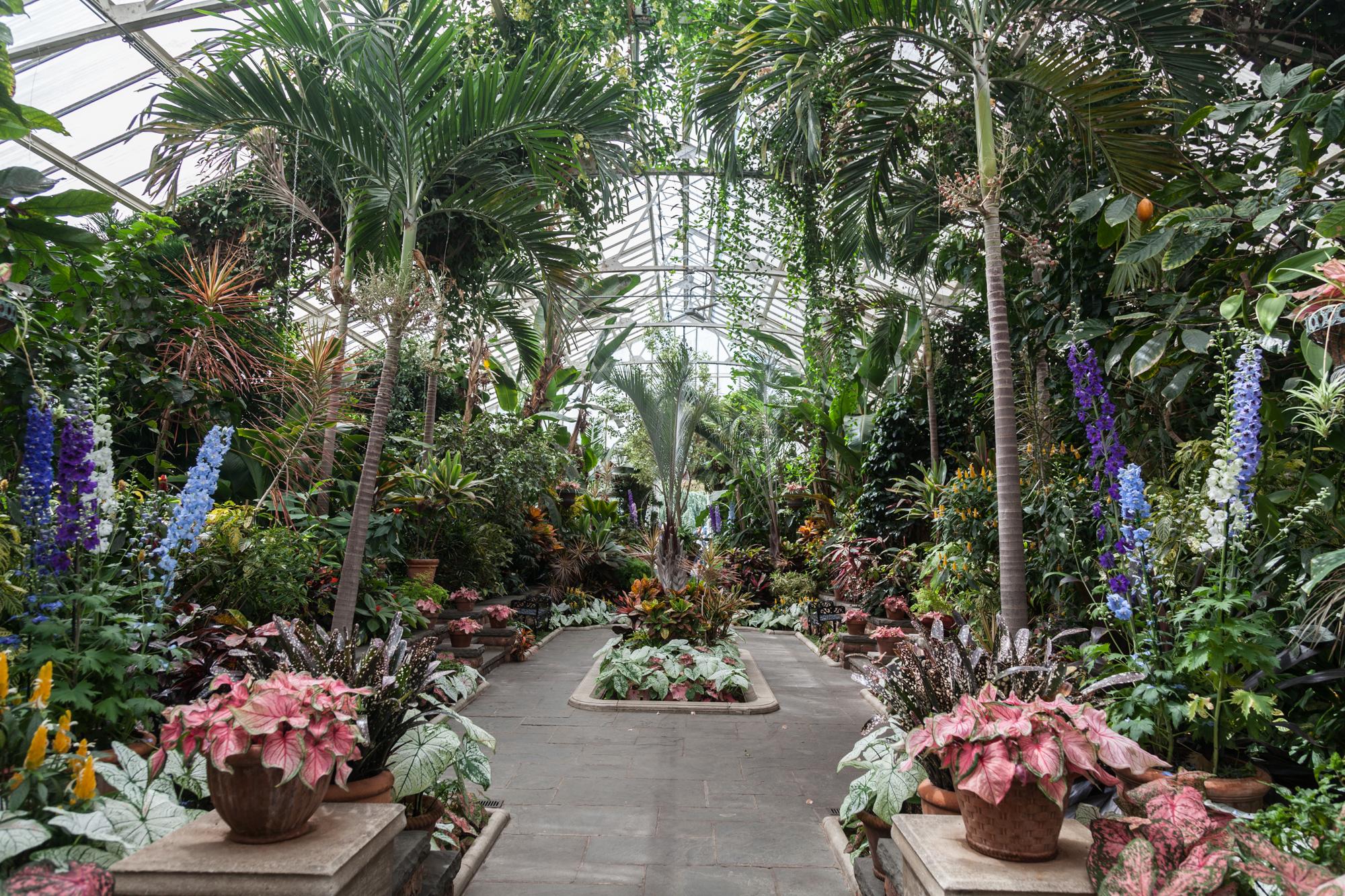The grandeur of the main greenhouse