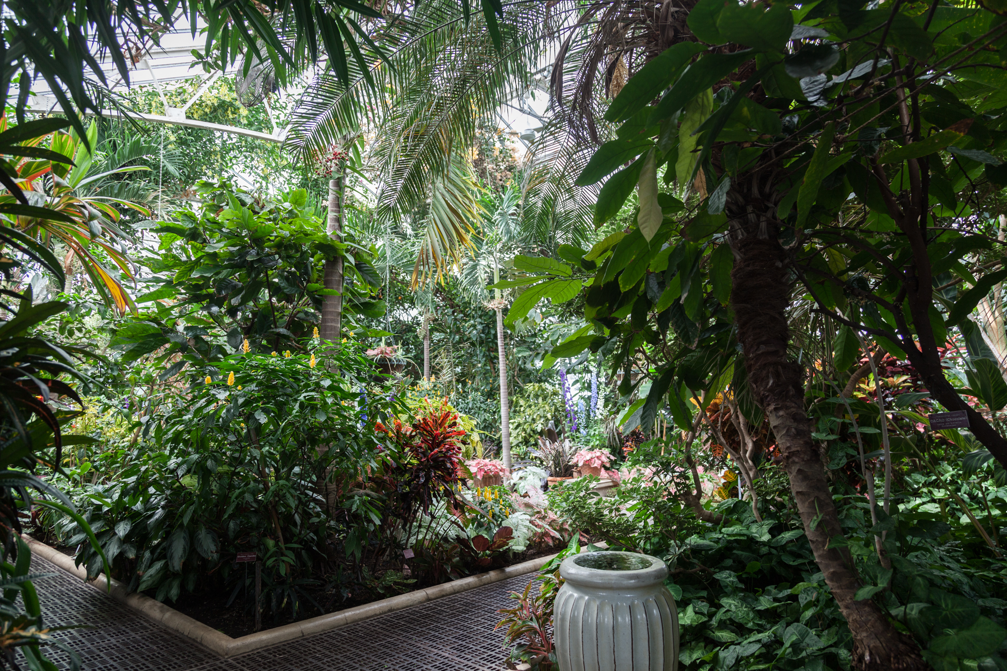 Planting-Fields-Arboretum-Greenhouse-Homestead-Brooklyn-Summer-Rayne-Oakes.jpg