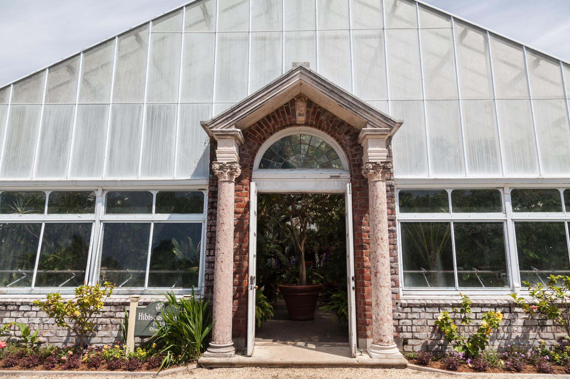 Planting-Fields-Greenhouse-Summer-Rayne-Oakes-Homestead-Brooklyn.jpg