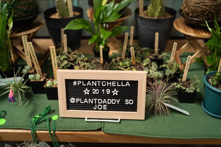 Plant-Swap-LA---0029.jpg