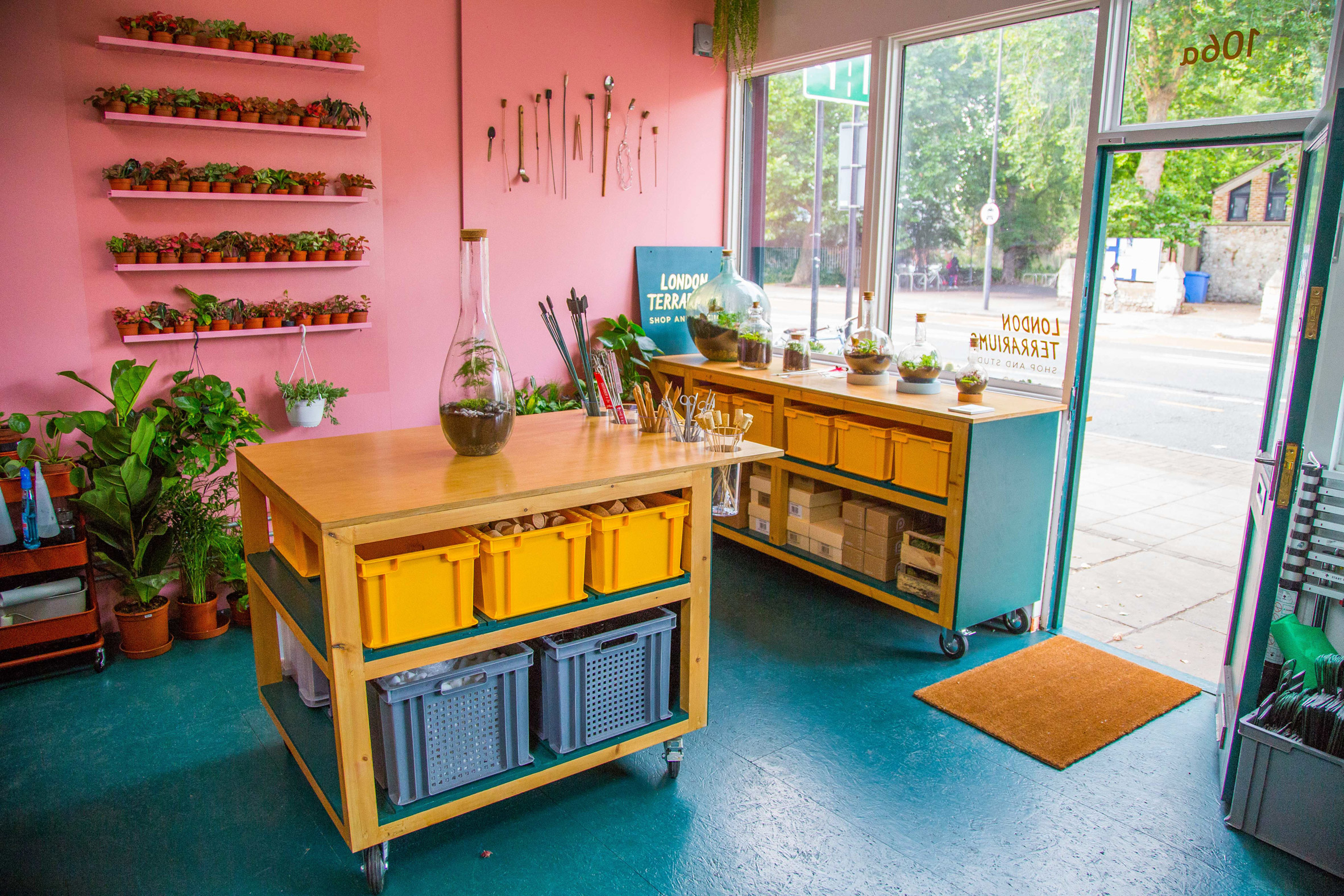 London-Terrariums-workshop-Summer-Rayne-Oakes.jpg