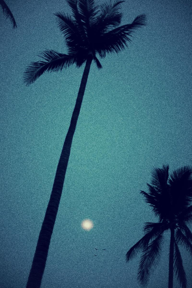 Una noche de extrema quietud y las energías cargándose a la espera de un nuevo día, y la ilusión de un mejor oleaje !
