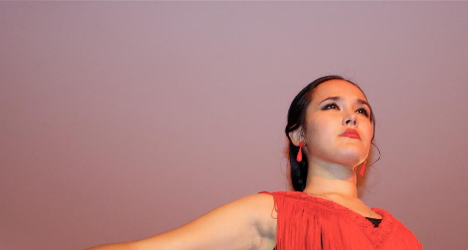 flamenco 3.jpg