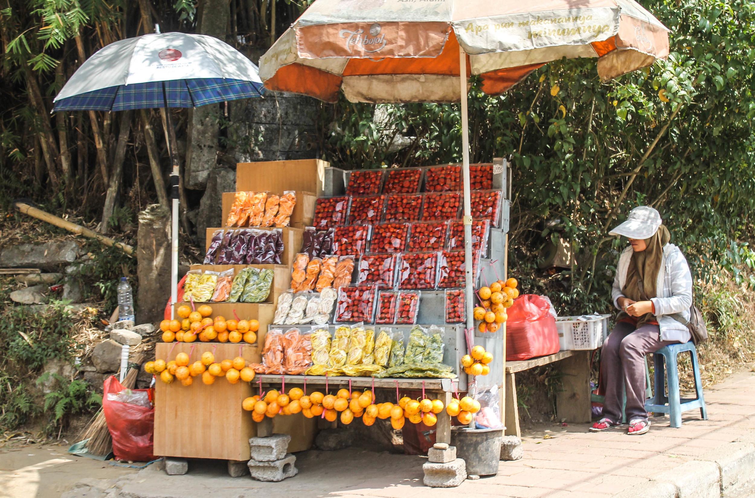 northern-bali-fruit-stand