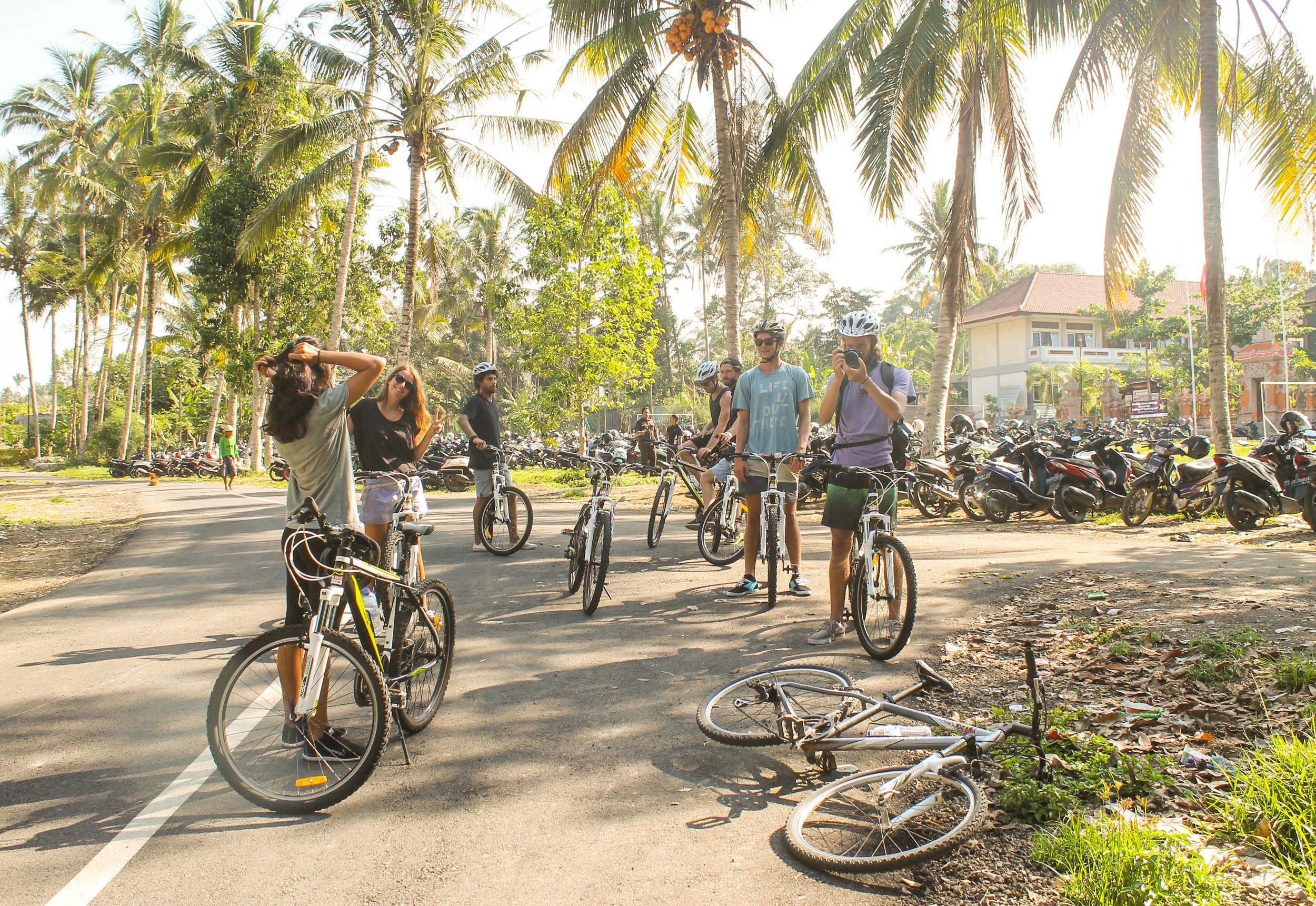 Mountain-Biking-Group