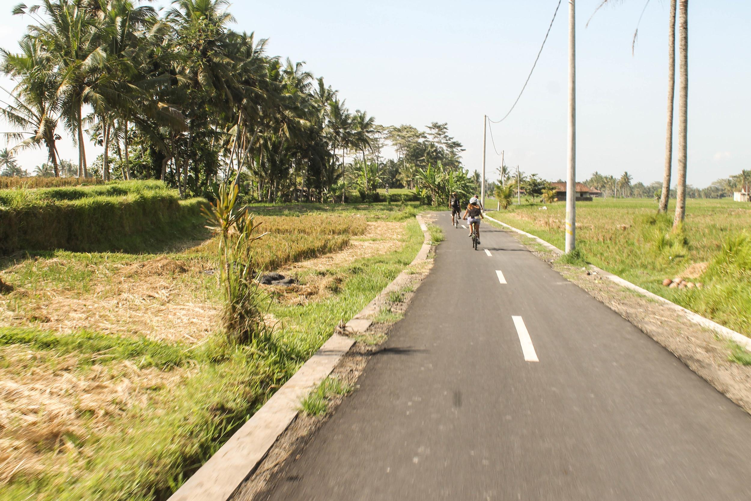 Ubud-Road