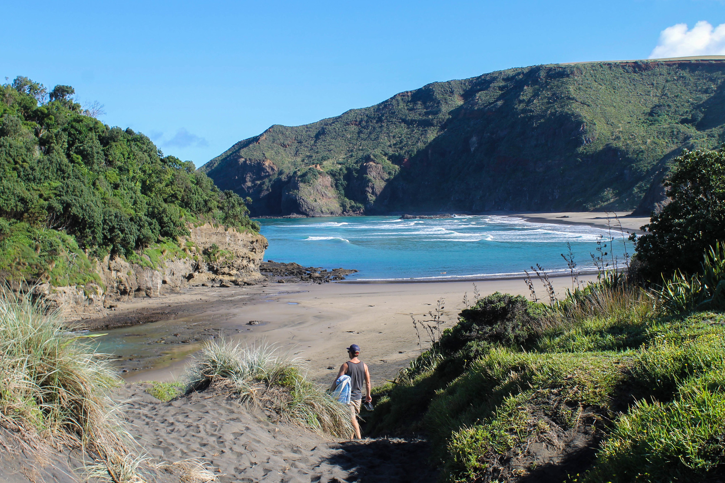 oneil-bay-nz