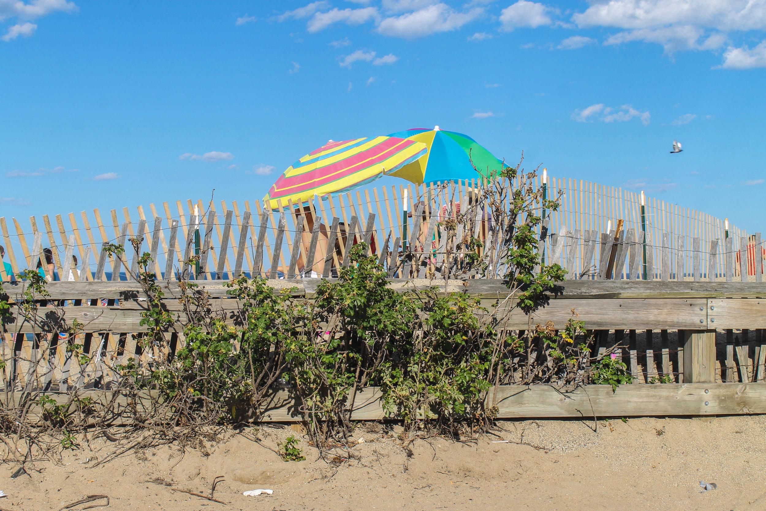 Salisbury Beach.