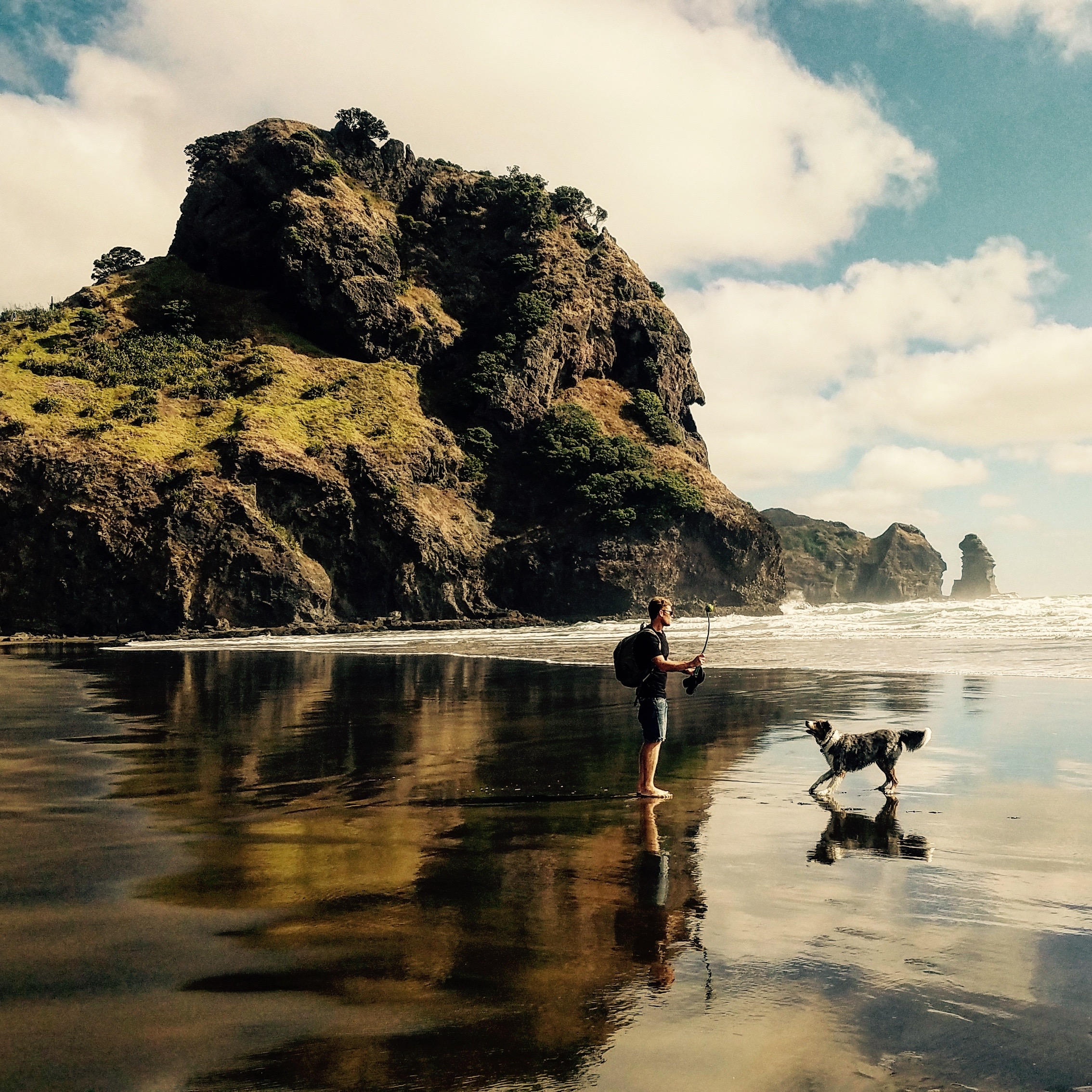 Fetch at Piha.