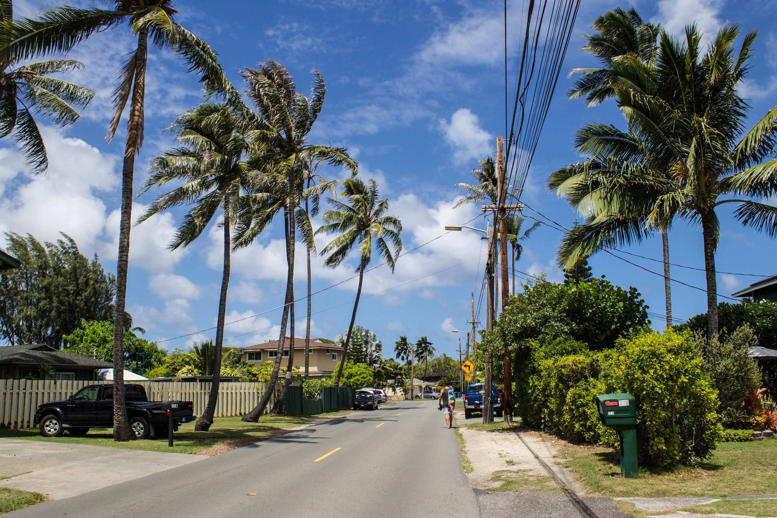 kailua-walk.jpg