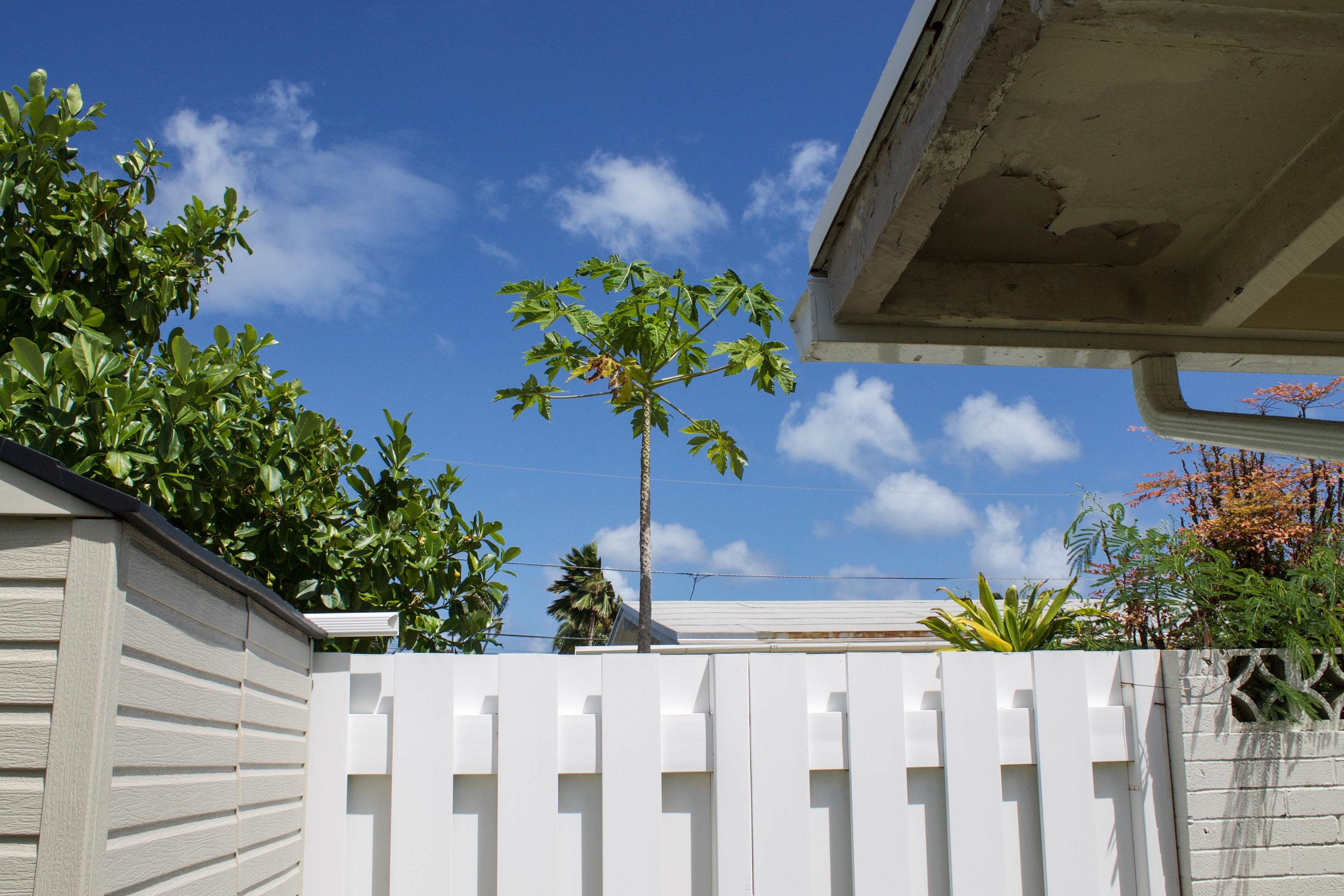 kailua-house.jpg