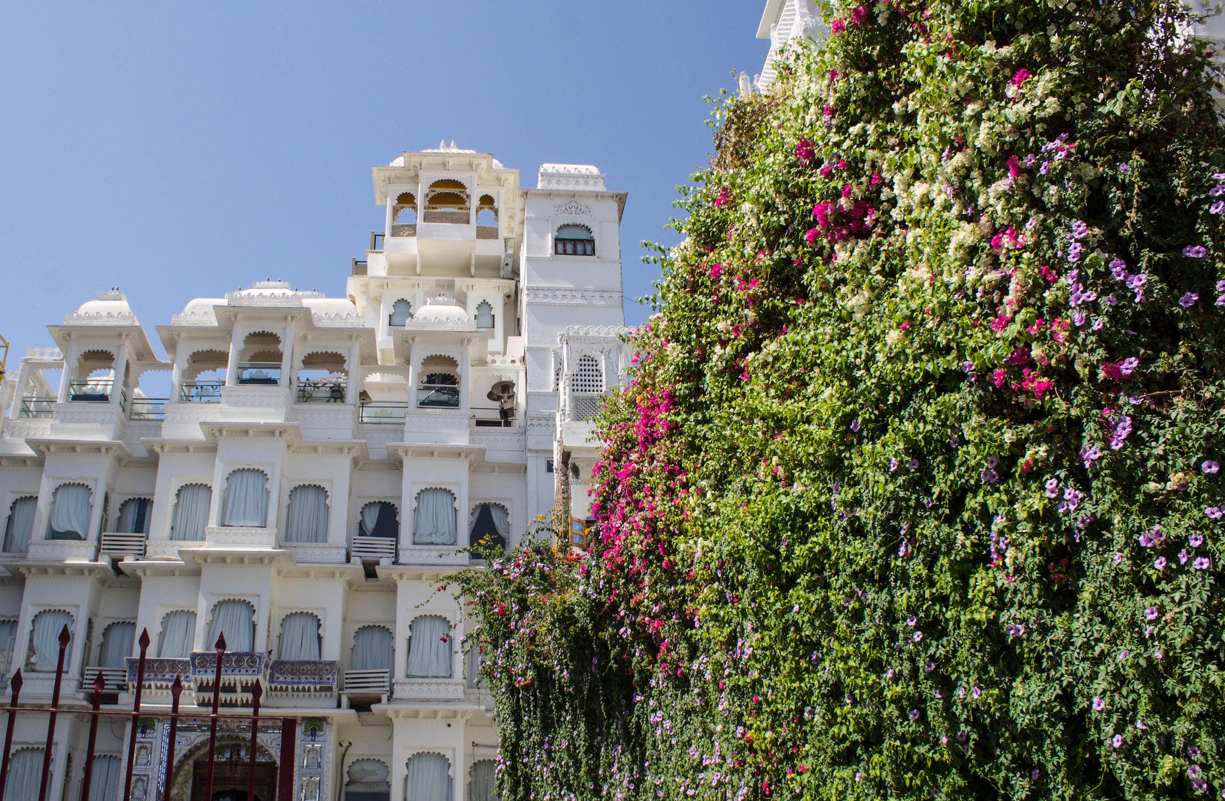 udaipur-india.jpg