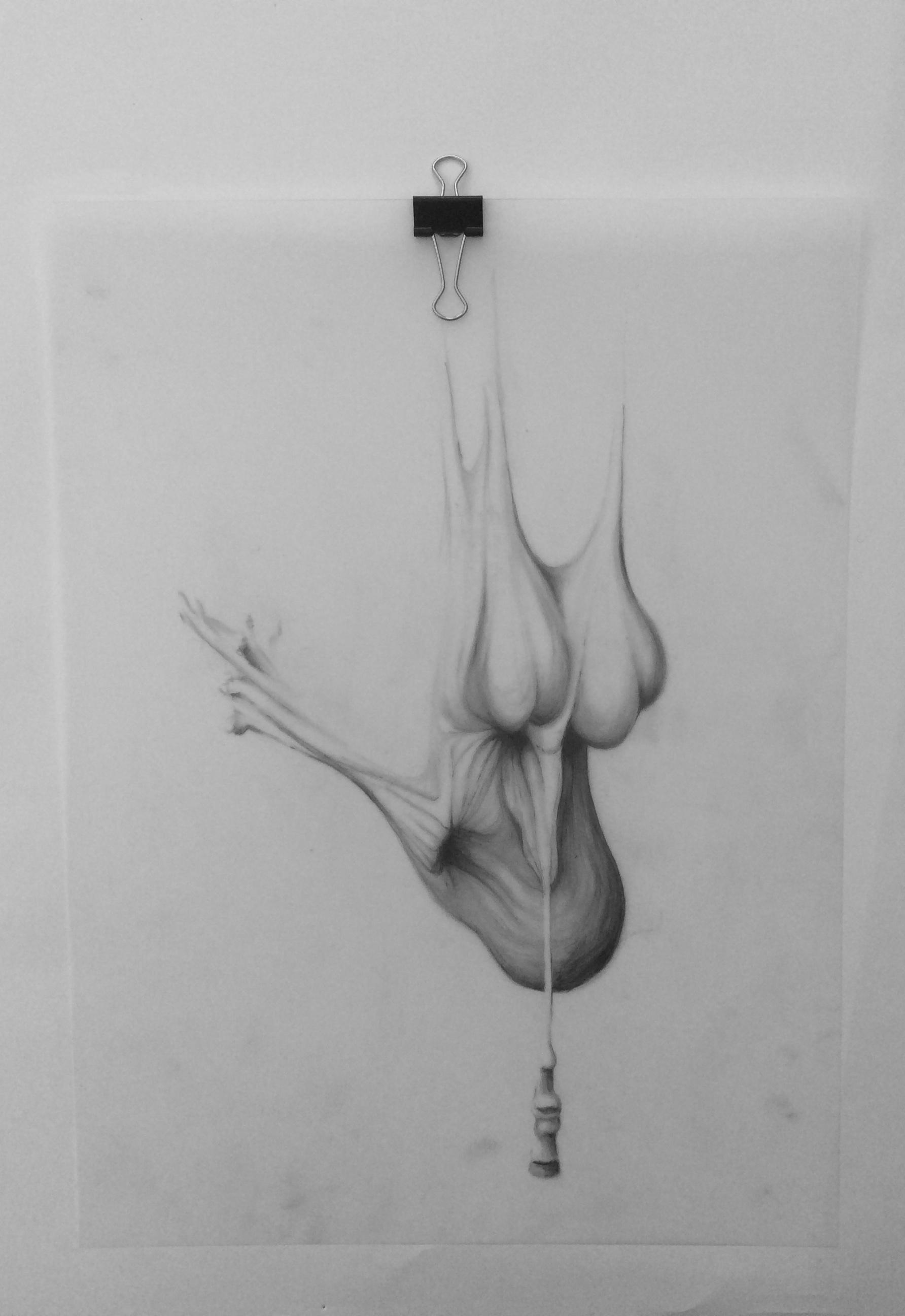 """Body 06, graphite on mylar, 9"""" x 12"""""""