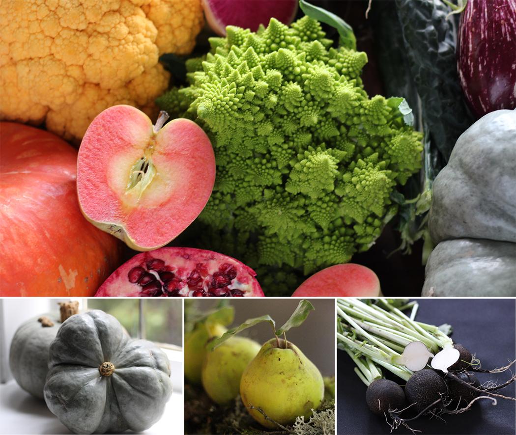 Farmers Market haul in autumn