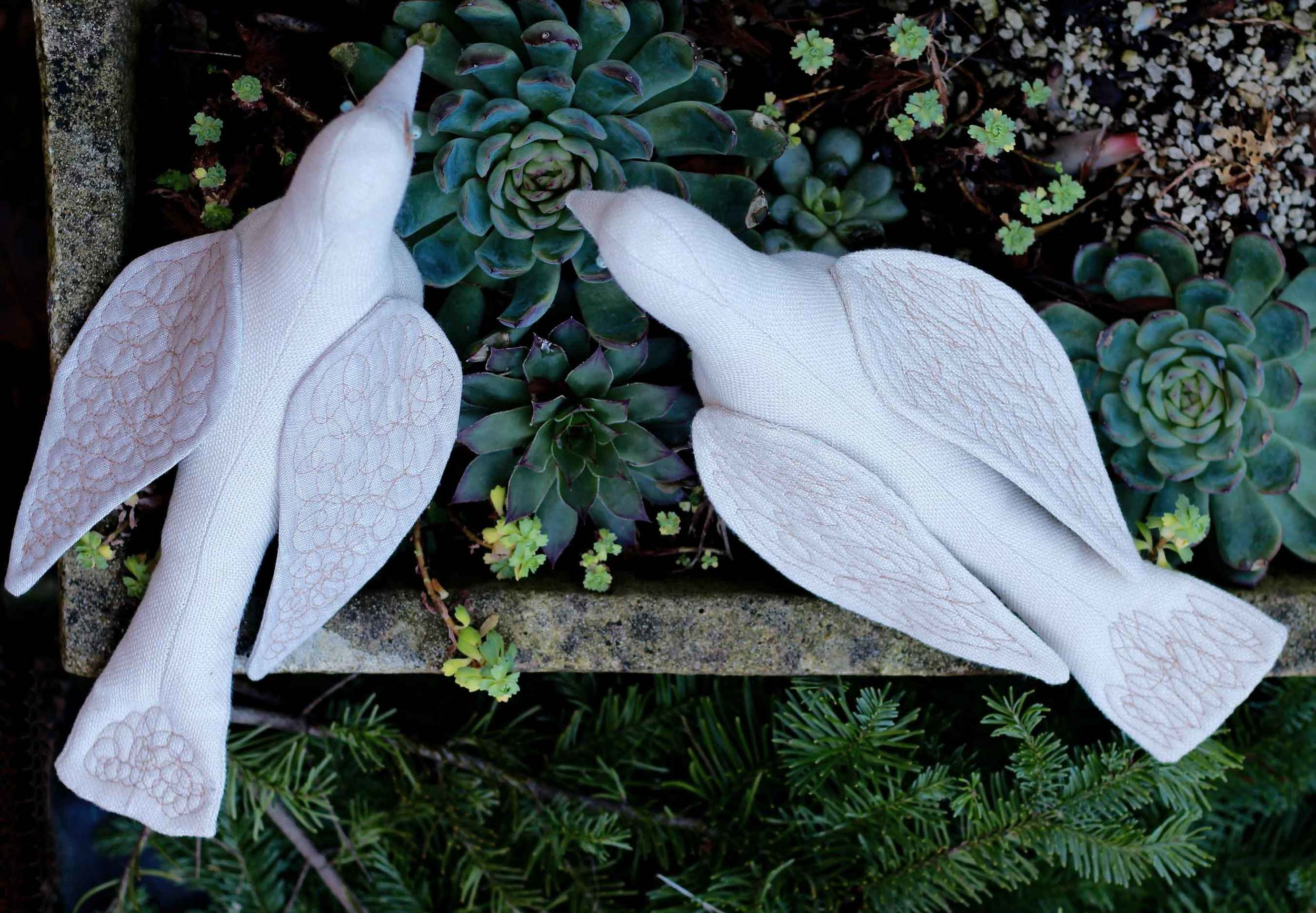 handmade sewn dove, peace dove, design by Thread & Whisk, doves chatting over succulents