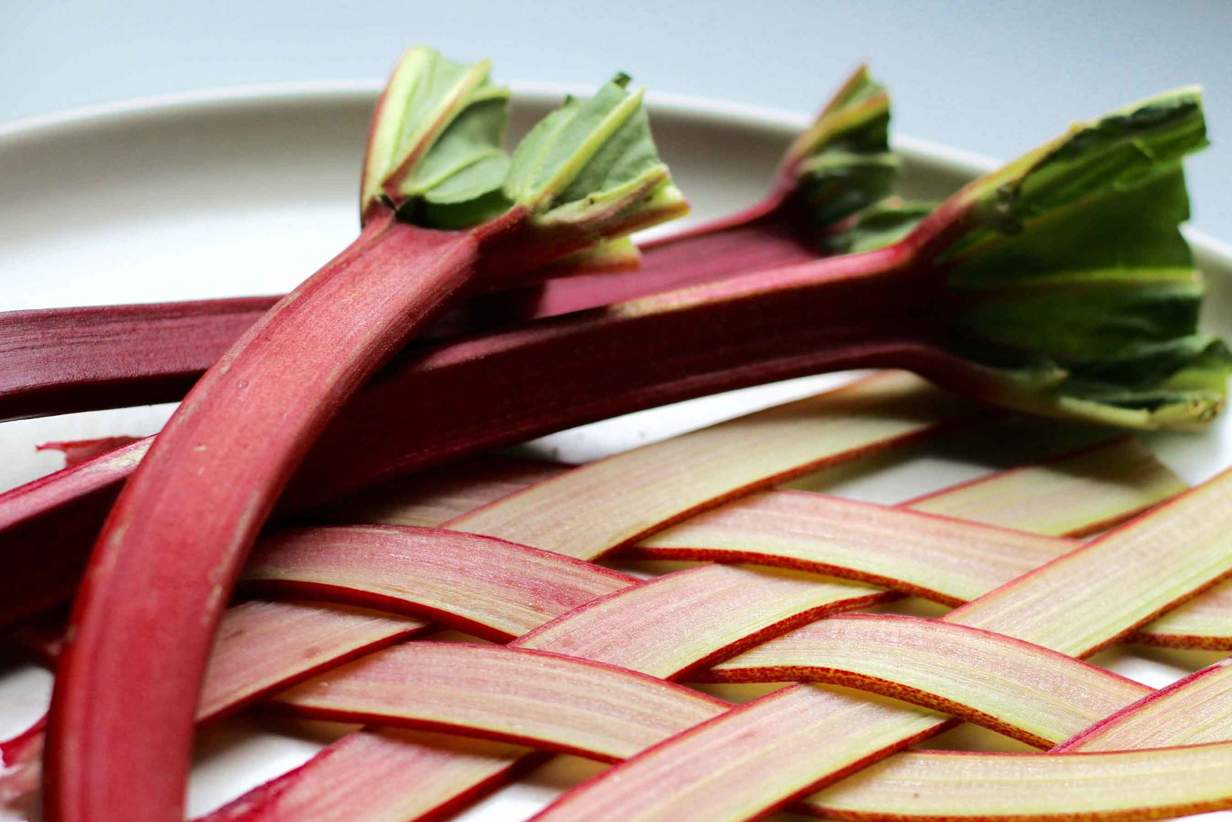 Beautiful Rhubarb - Rhubarb Mojito recipe at Thread & Whisk.  Perfect for spring!