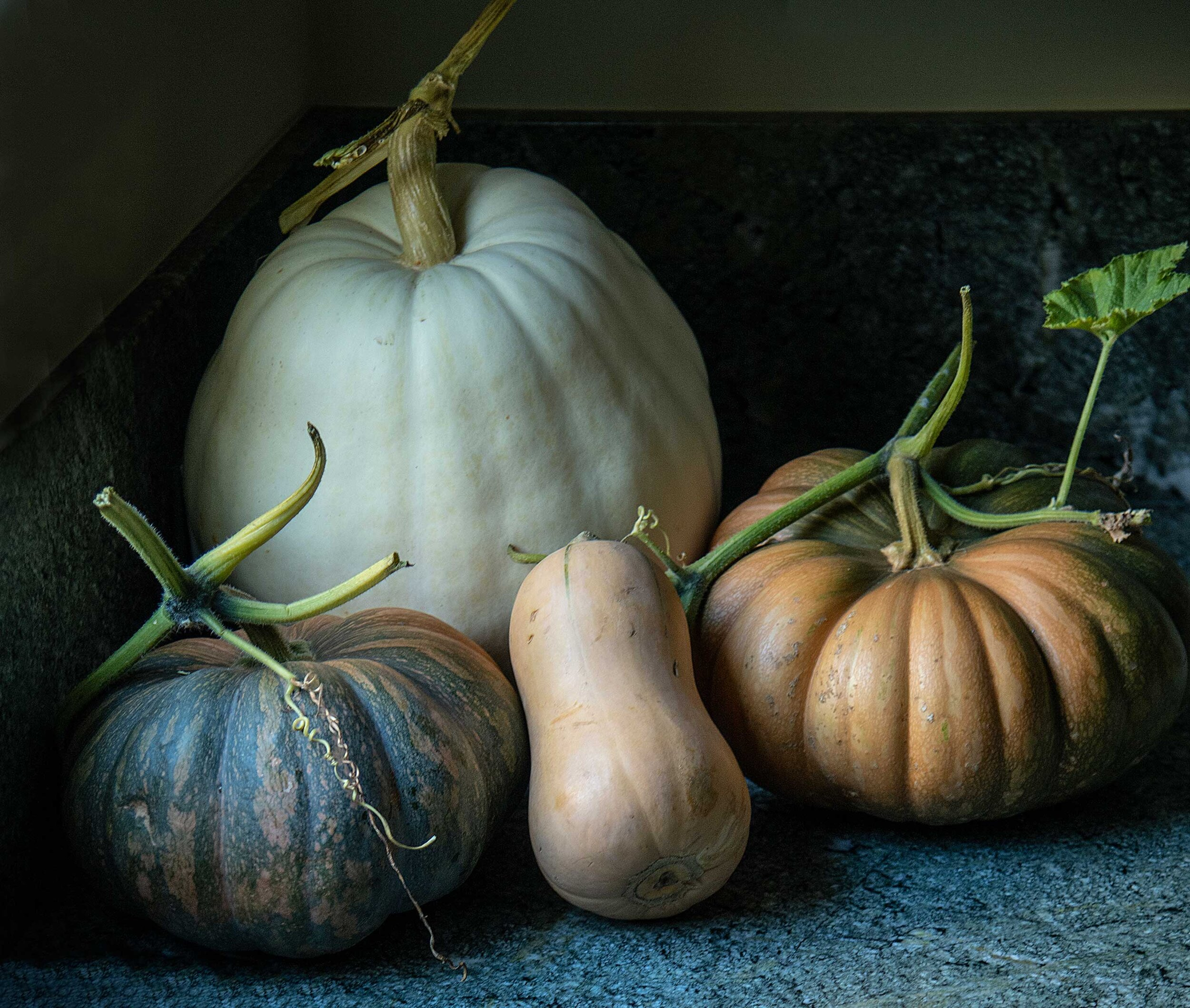 A grouping of pumpkins and squash are a gorgeous way to bring Fall inside.