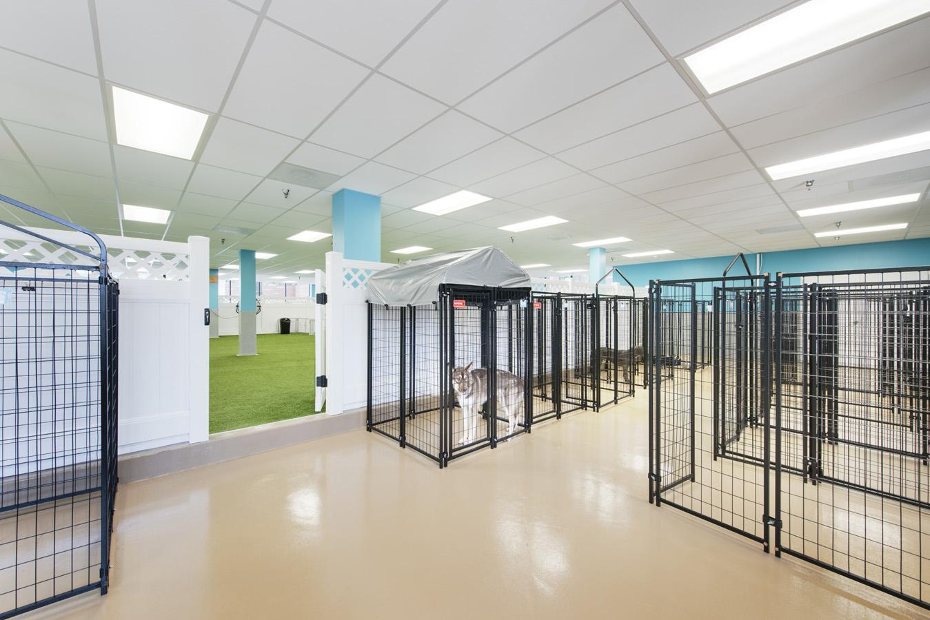 Hope Advanced Veterinary Center Image 176020.jpg