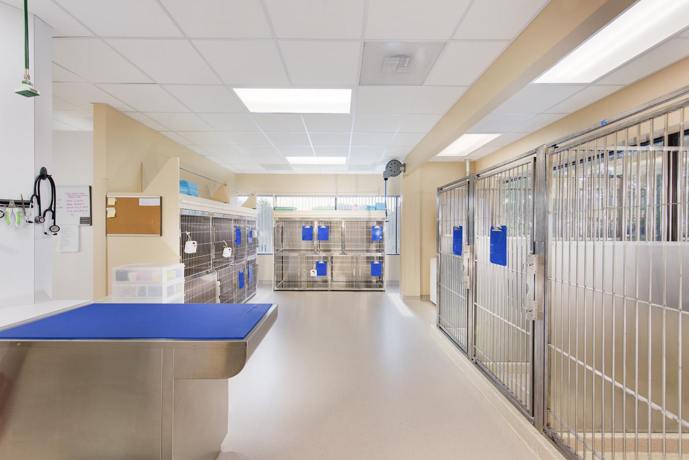 Hope Advanced Veterinary Center Image 175853.jpg