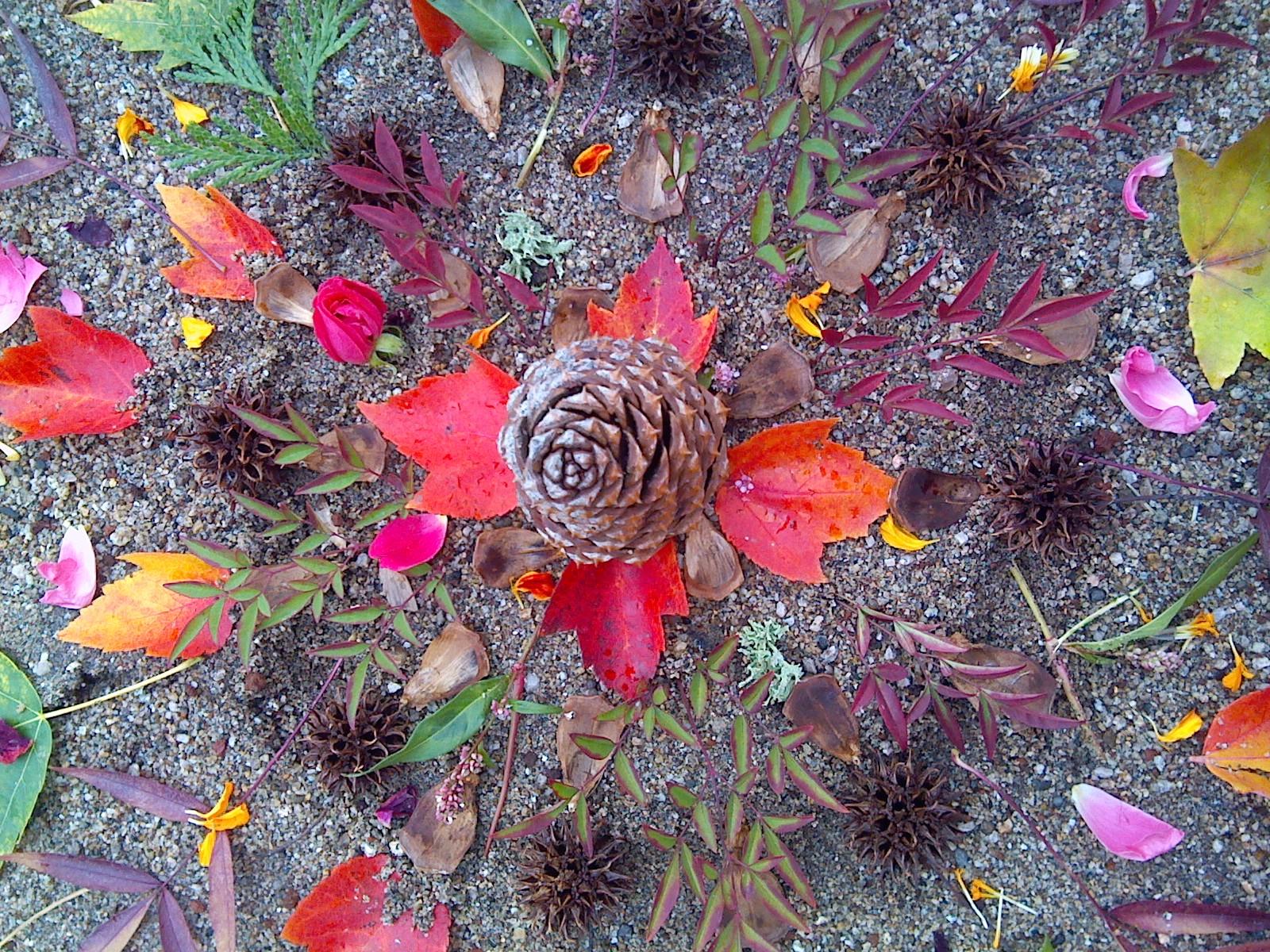 Fall Mandala, by Shelley Sage Heart 2017