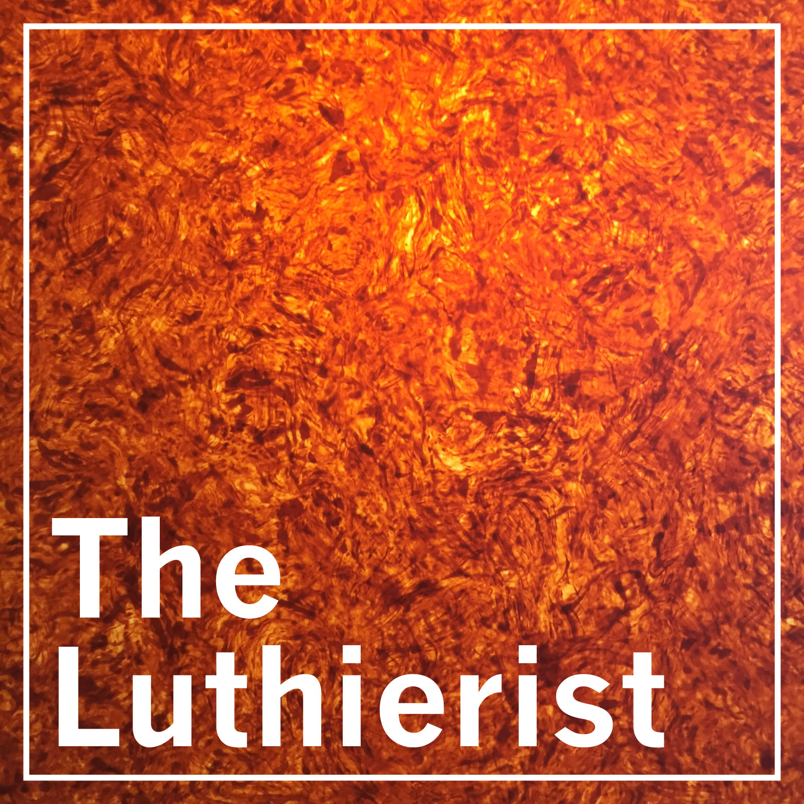 the luthierist podcast - frank brothers guitar company