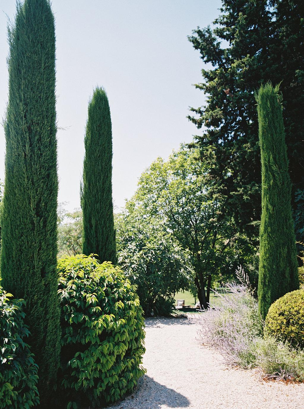 ProvenceFranceWeddingKatieGrantPhoto(4of249).jpg