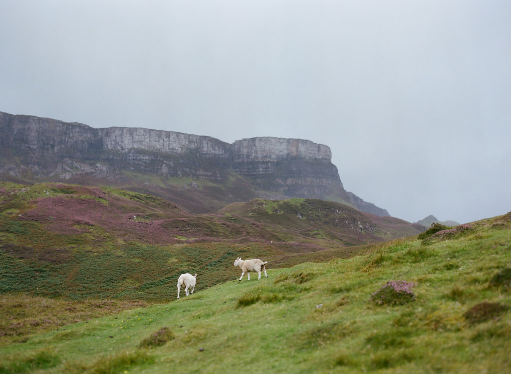 Scotland-Prewedding-highlands-castle-Engagment-Photos-Katie-Grant (26 of 139).jpg