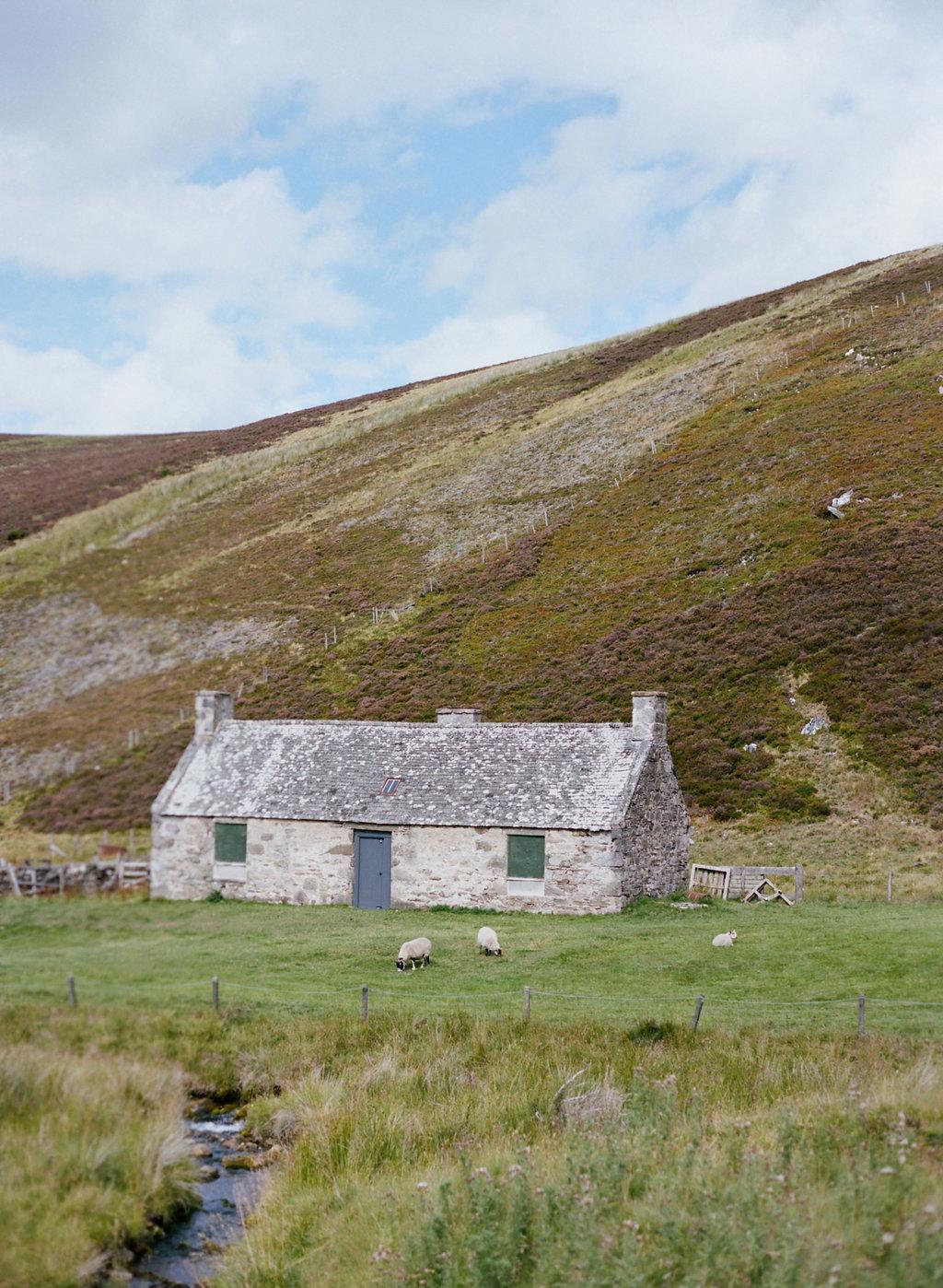 Scotland-Prewedding-highlands-castle-Engagment-Photos-Katie-Grant (71 of 139).jpg