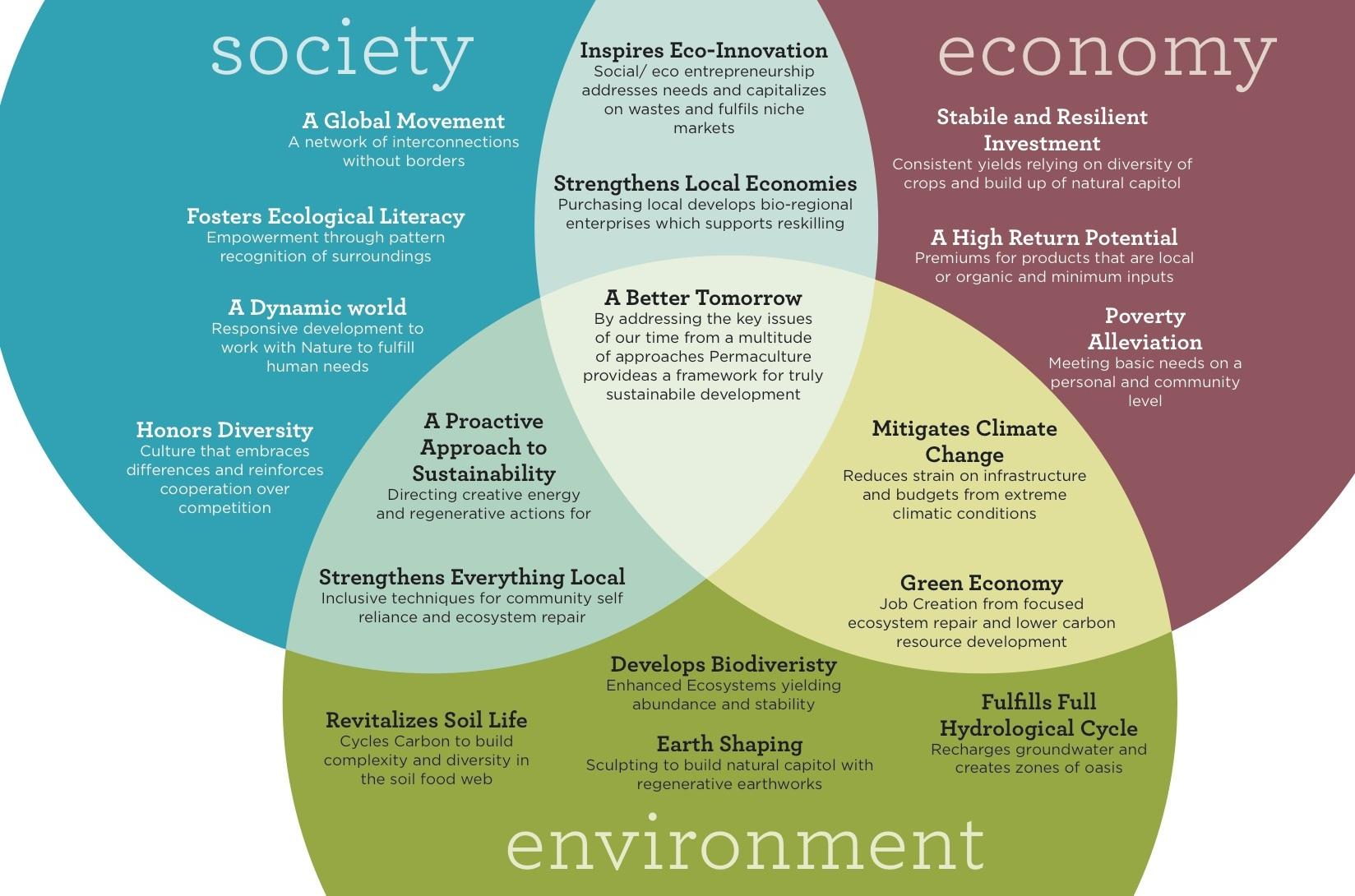 Image courtesy of treeyopermaculture.com