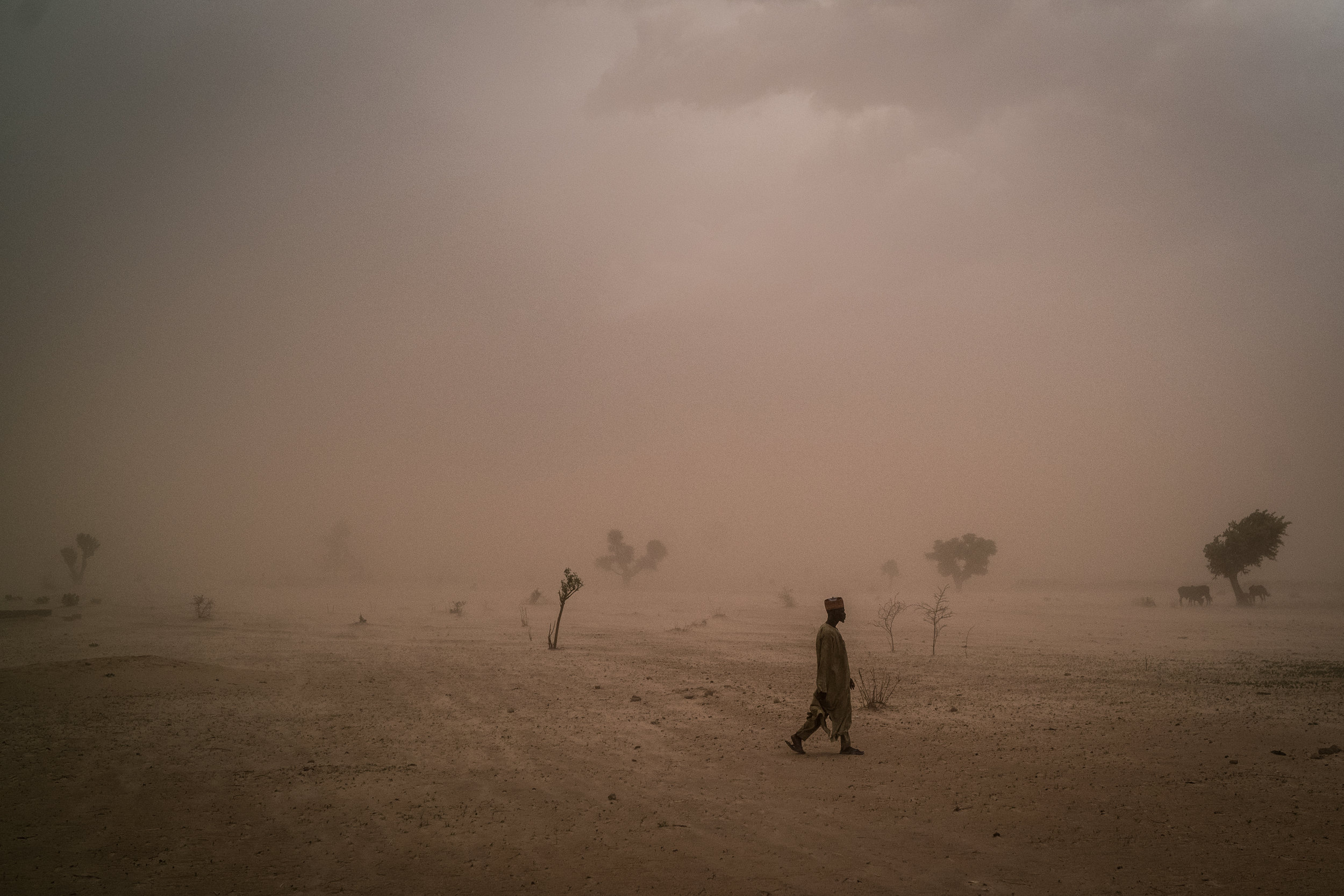 A displaced man walks across the parched land outside of Maiduguri, Nigeria.