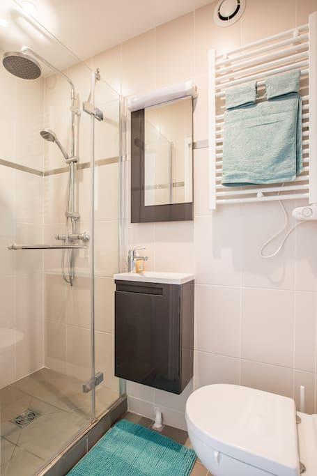 廁所也是很小, 可是所有小櫃子裡都收納了該有的用品.  真的不能不佩服歐洲很多這樣迷你的設備, 很適合小公寓. 不占空間,住在裡面也不至於覺得會有空間狹小症!