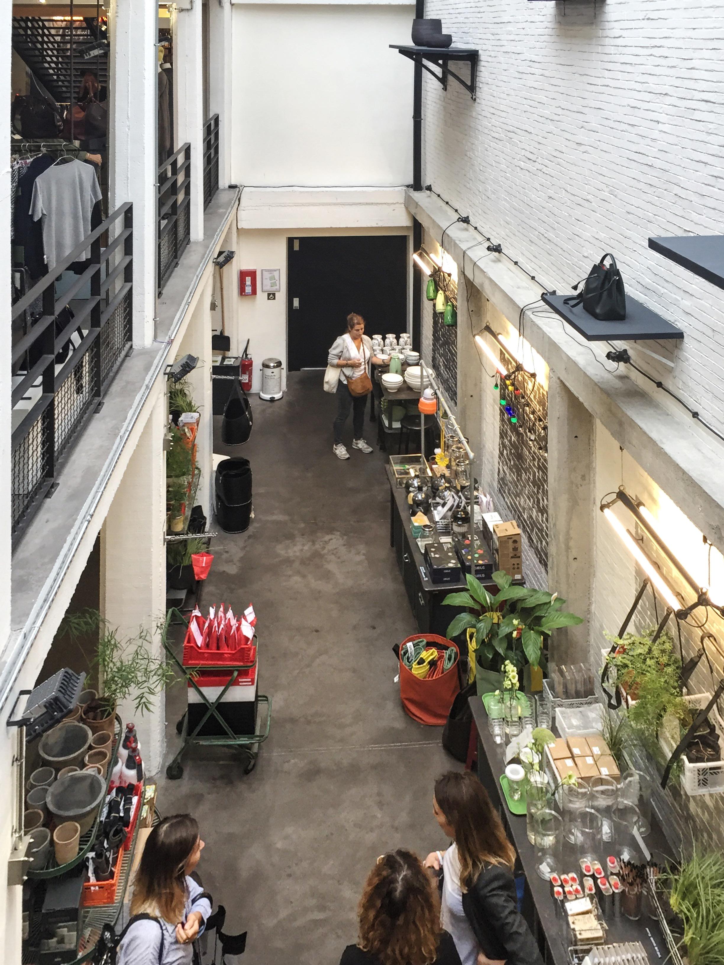 挑高樓梯區 - 從樓梯往下看地下室的園藝區