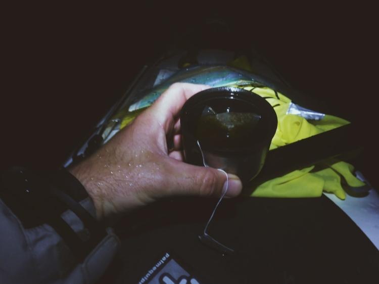 nightpaddle2