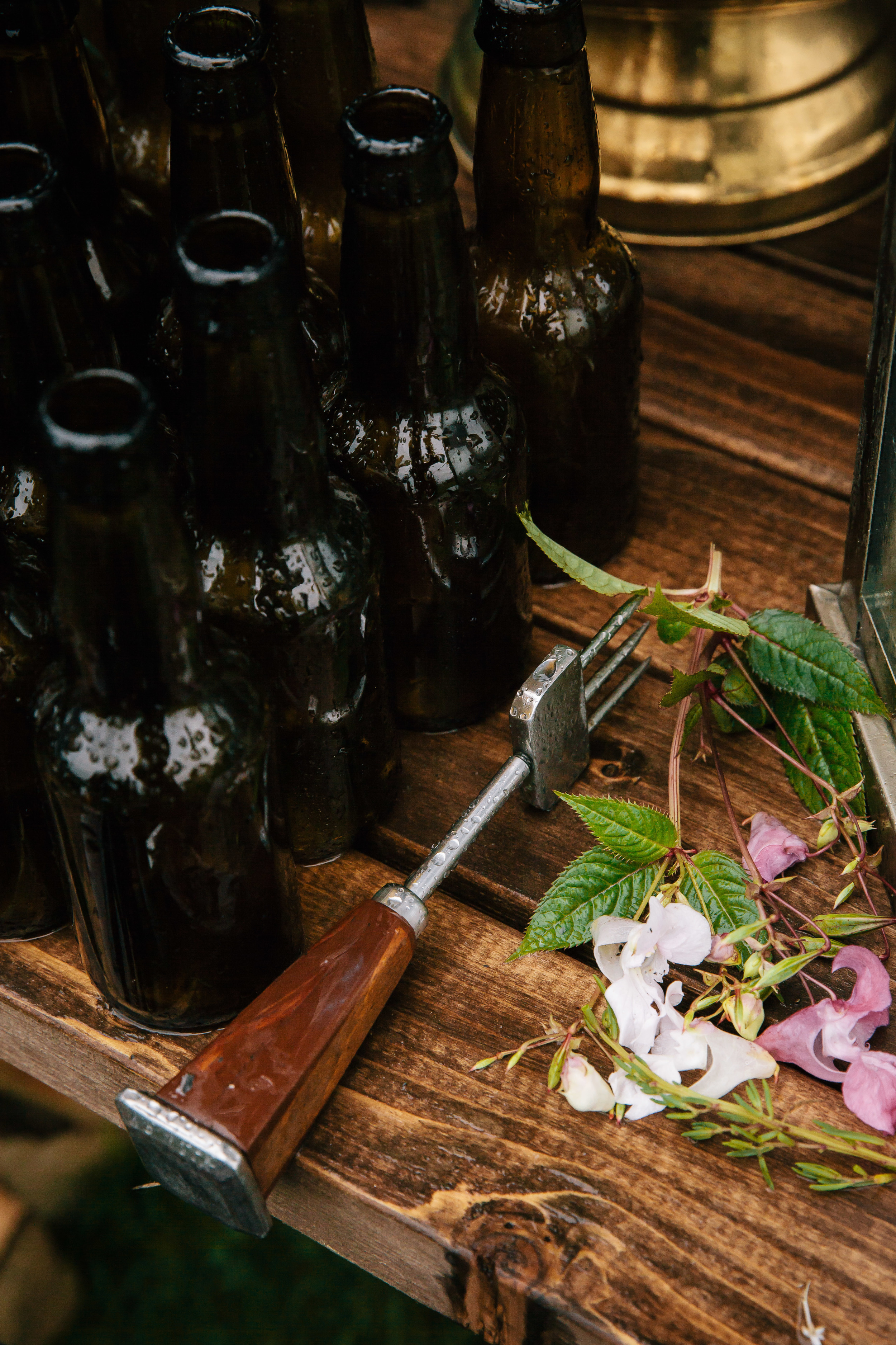 tools for making wild cocktails