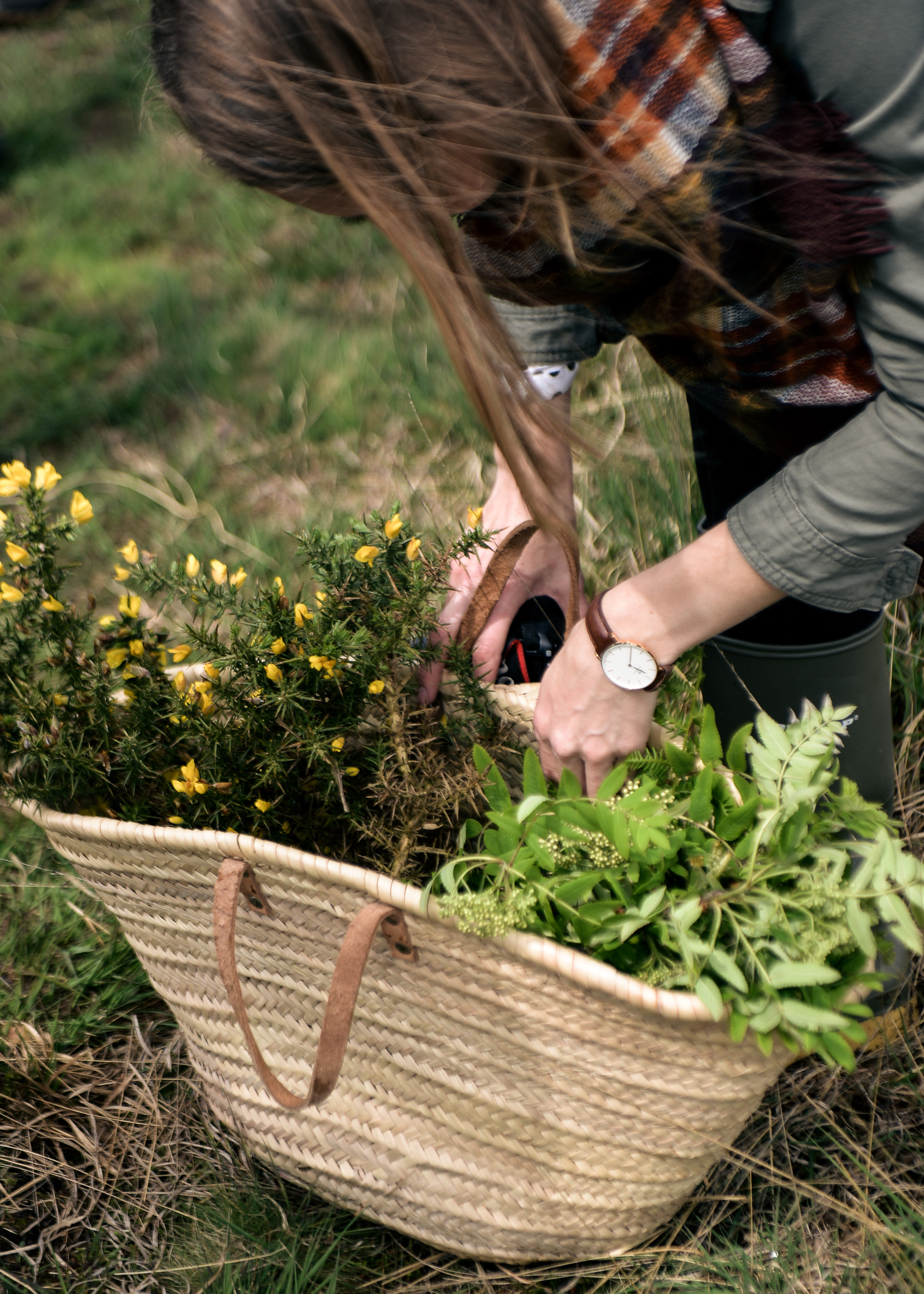 Escape to the English Countryside Retreat-Part 1 Foraging Morning-42.jpg
