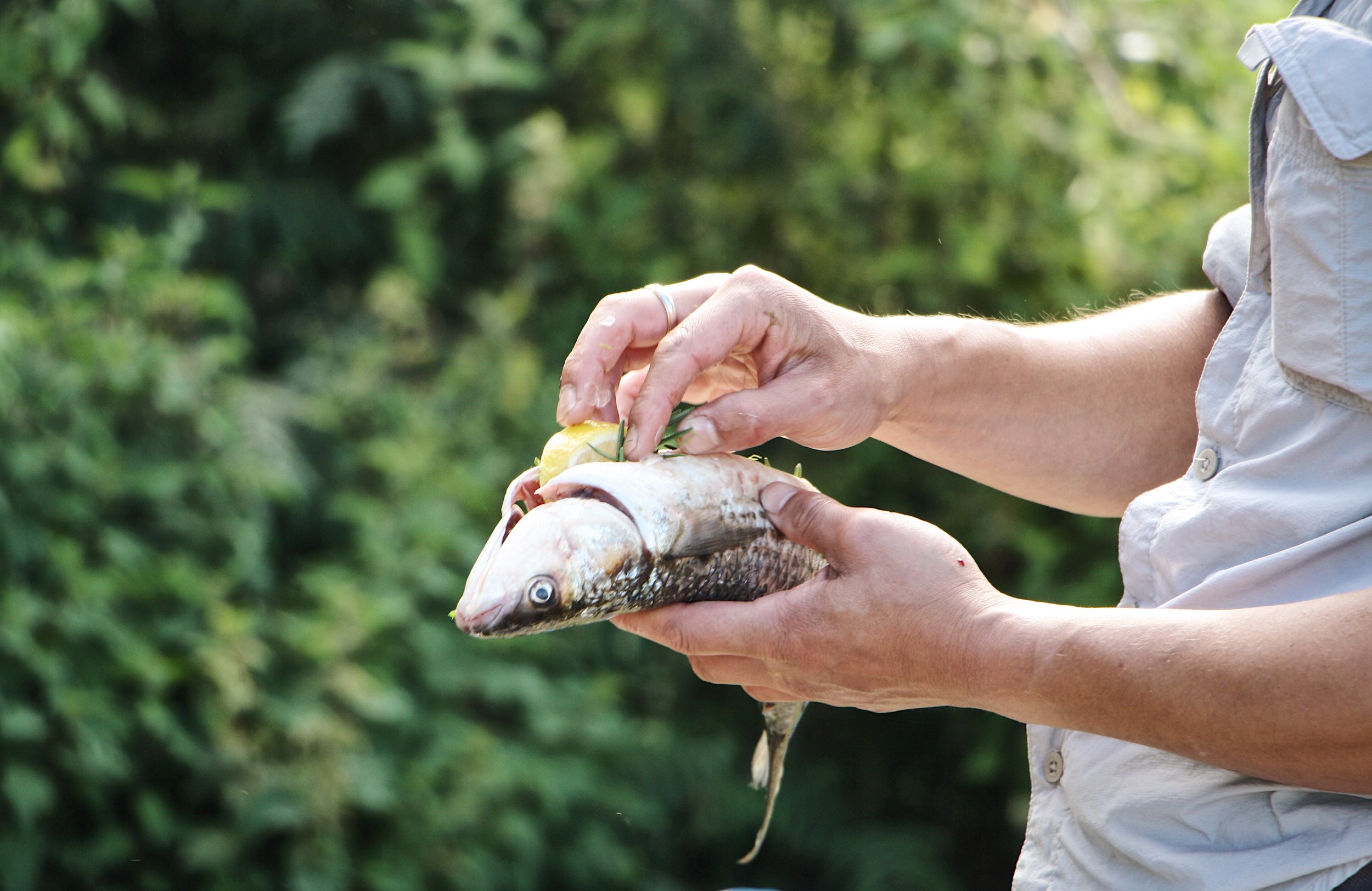 wild cooking courses in dorset