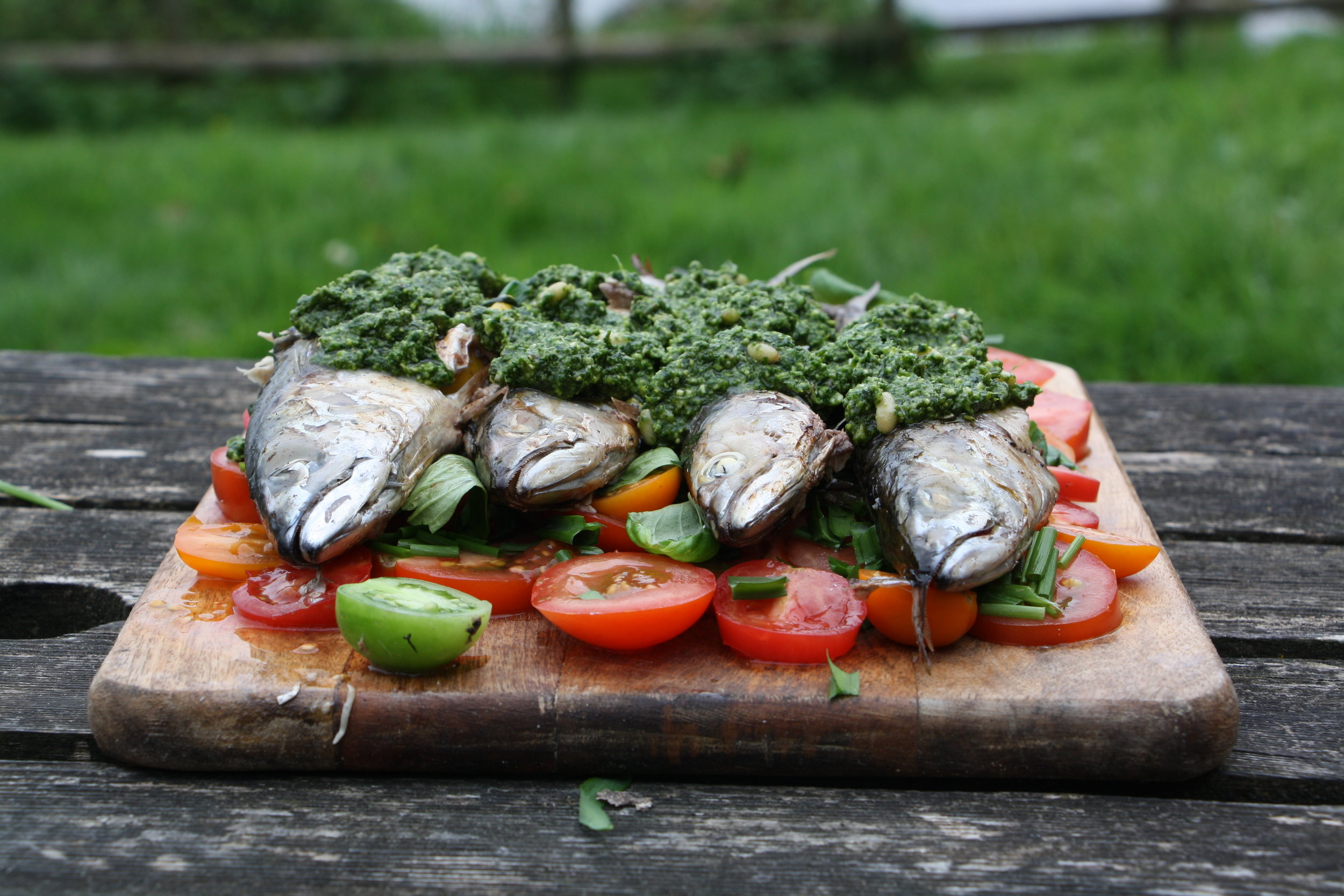 barbecued mackerel and wild pesto