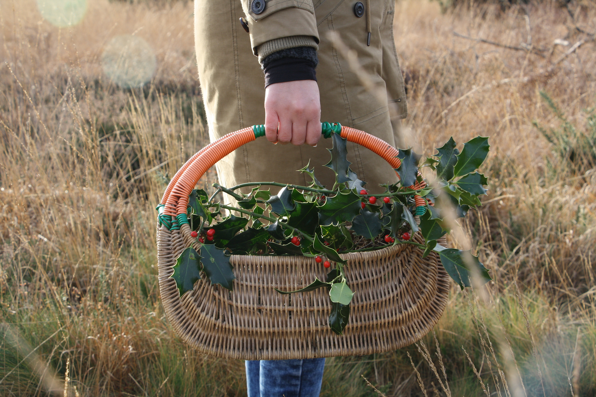 foraging in dorset with fore / adventure