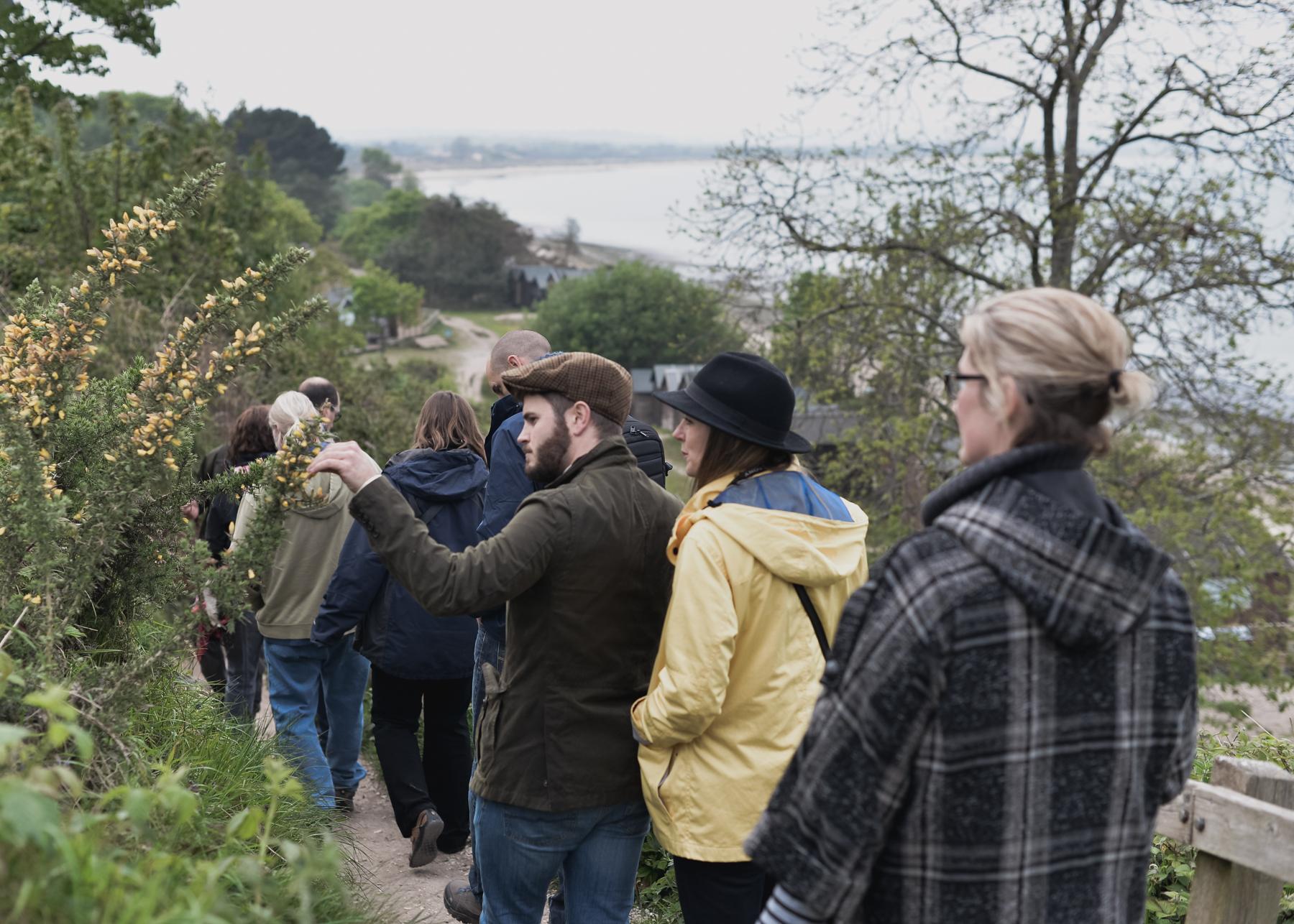 foraging courses in dorset