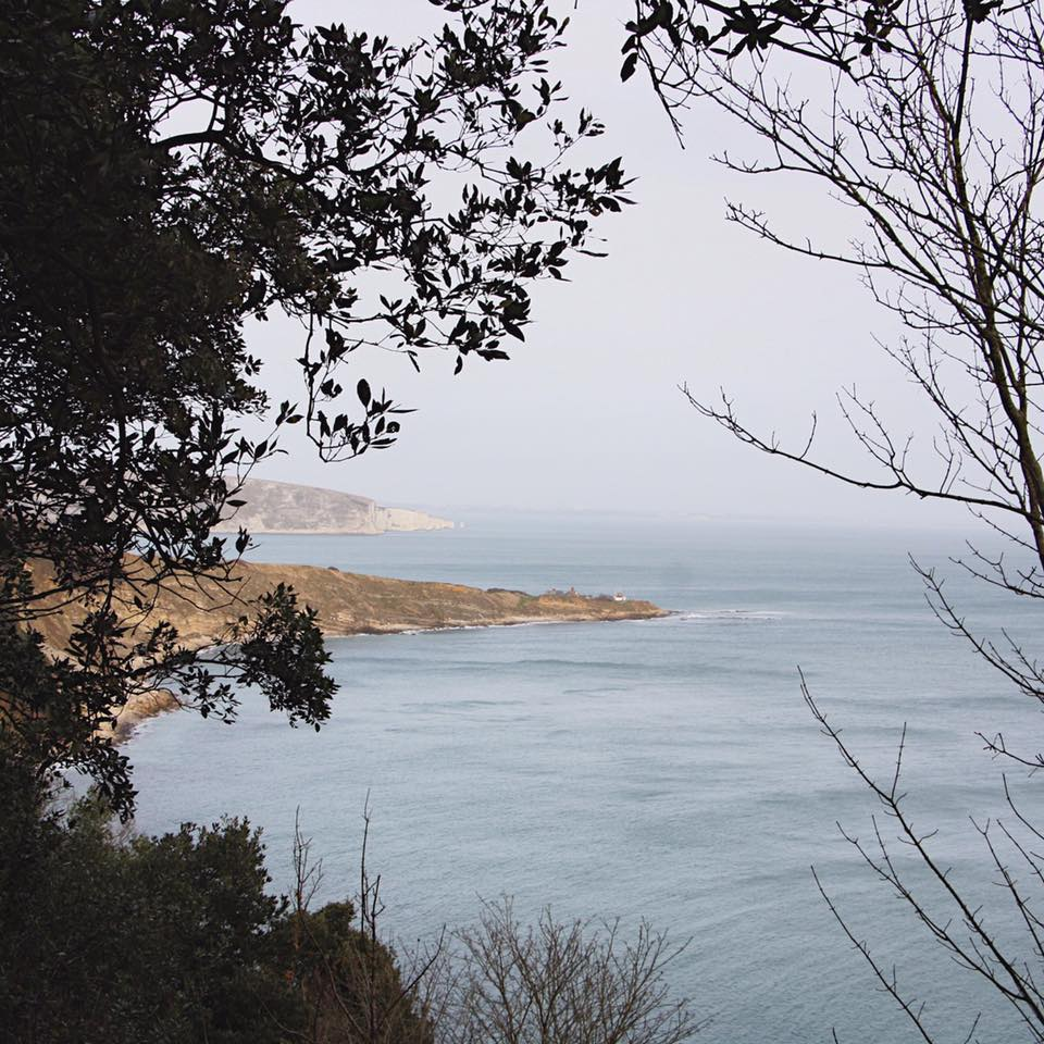 durlston view .jpg