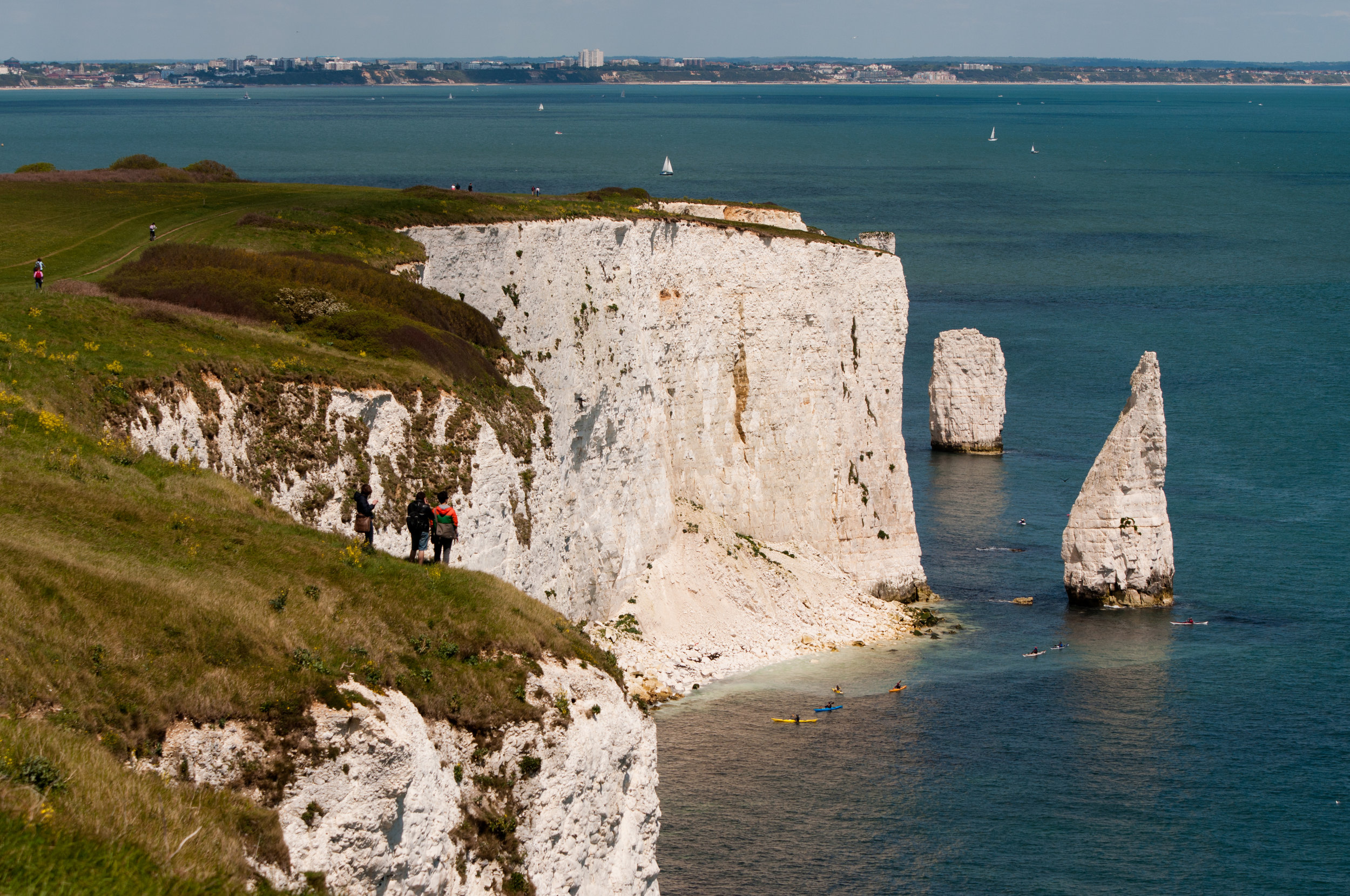 Old Harry Rocks in Studland