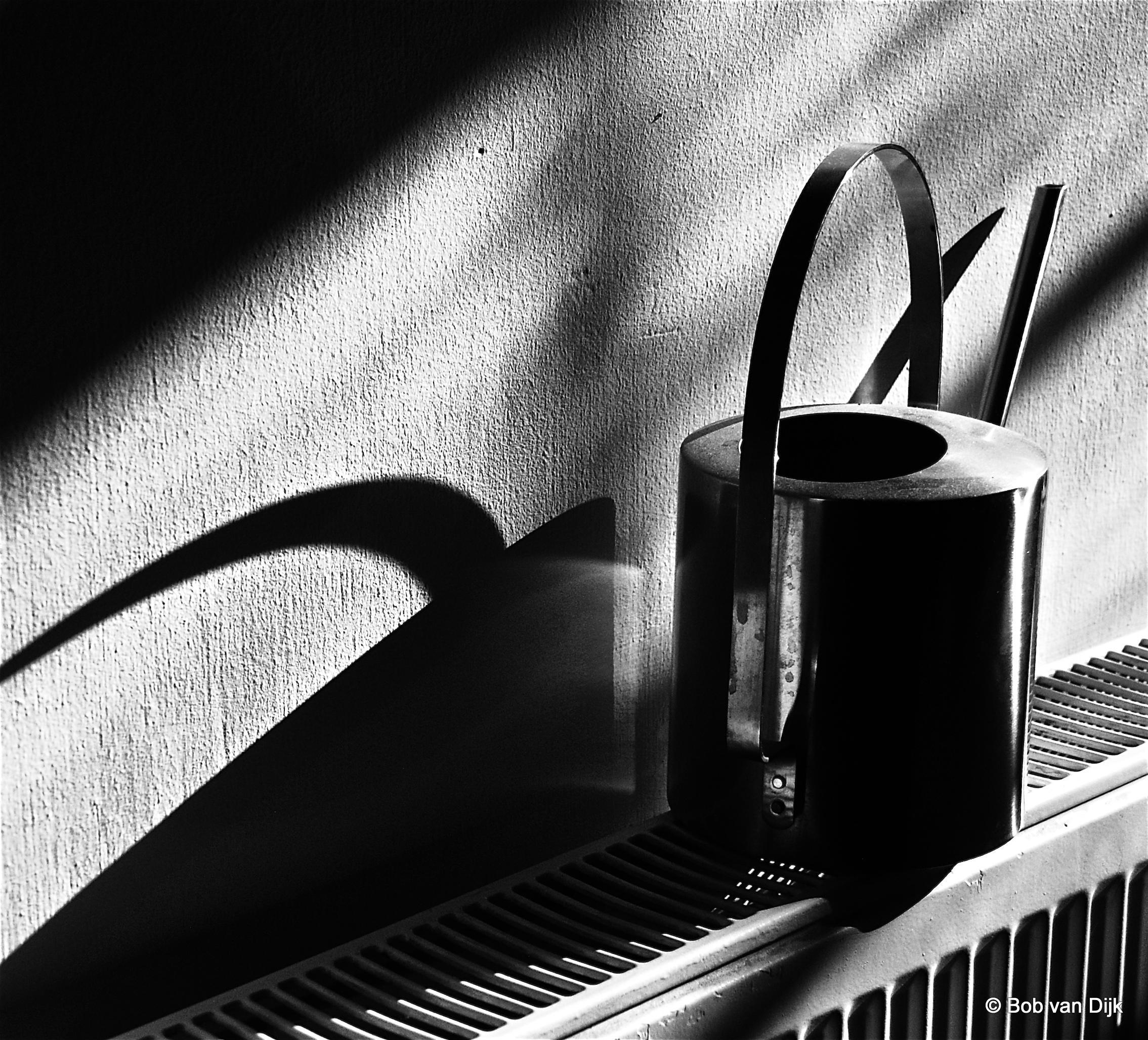 Inspired by André Kertész