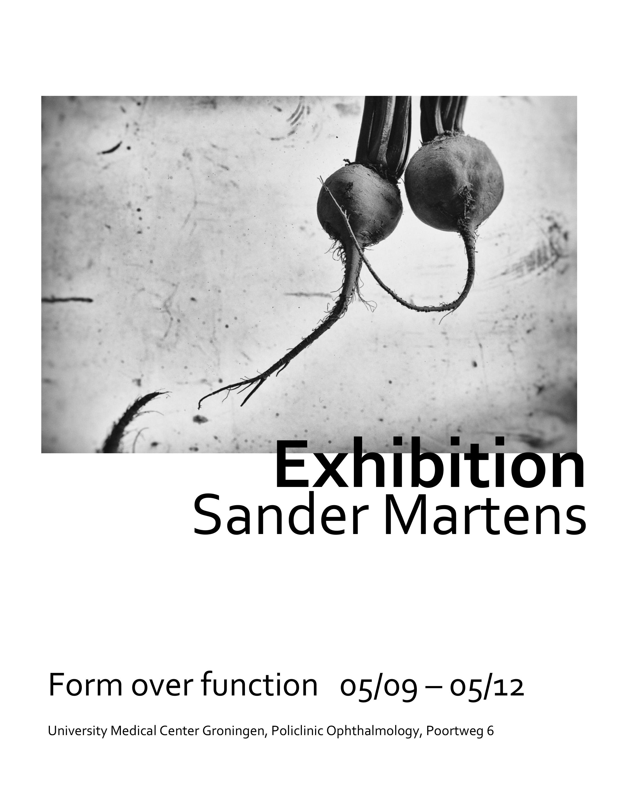 Form over function Poster_forpdf_UK.jpg