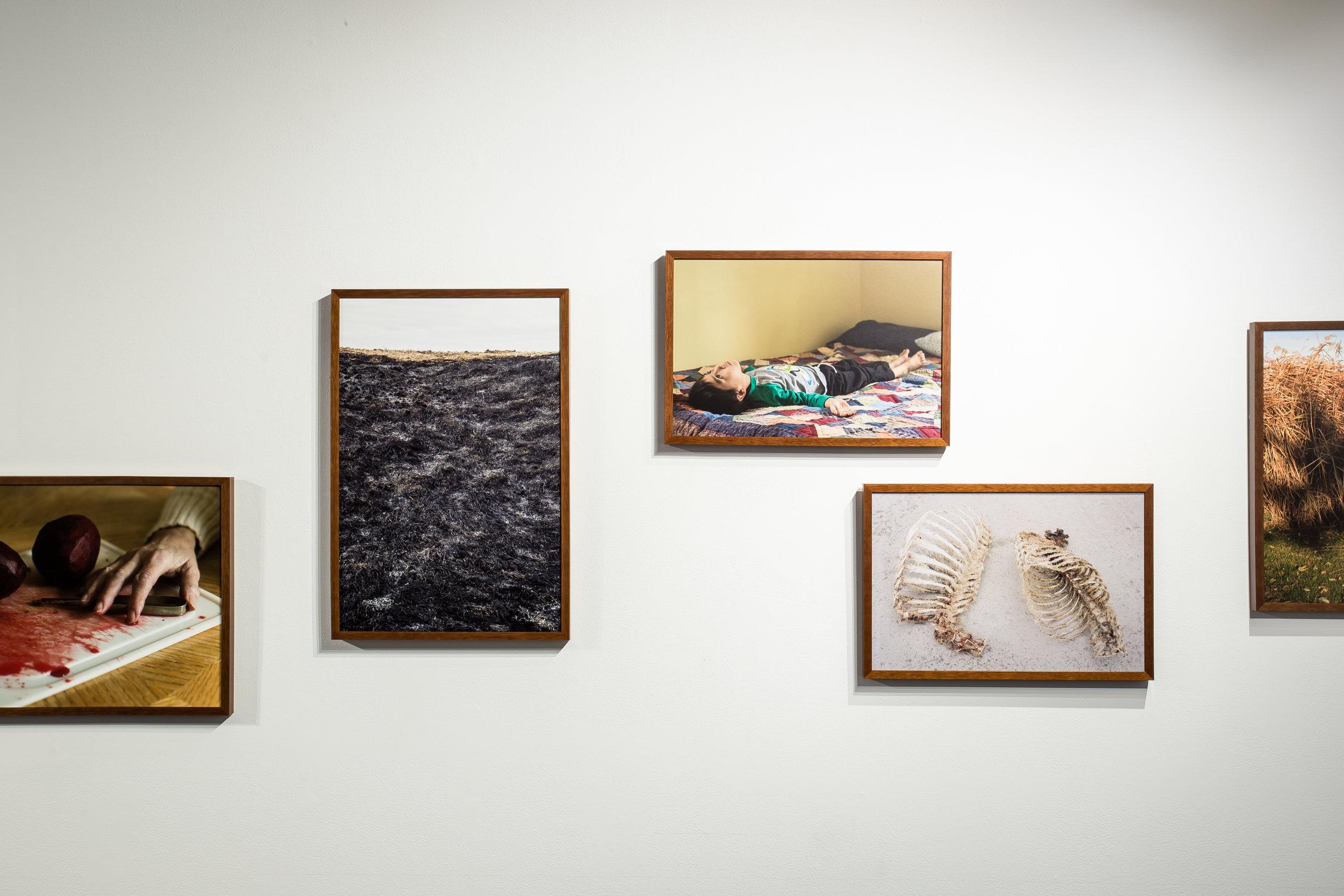 180522_CCC_MFA_Photo_Exhibition_0167.jpg