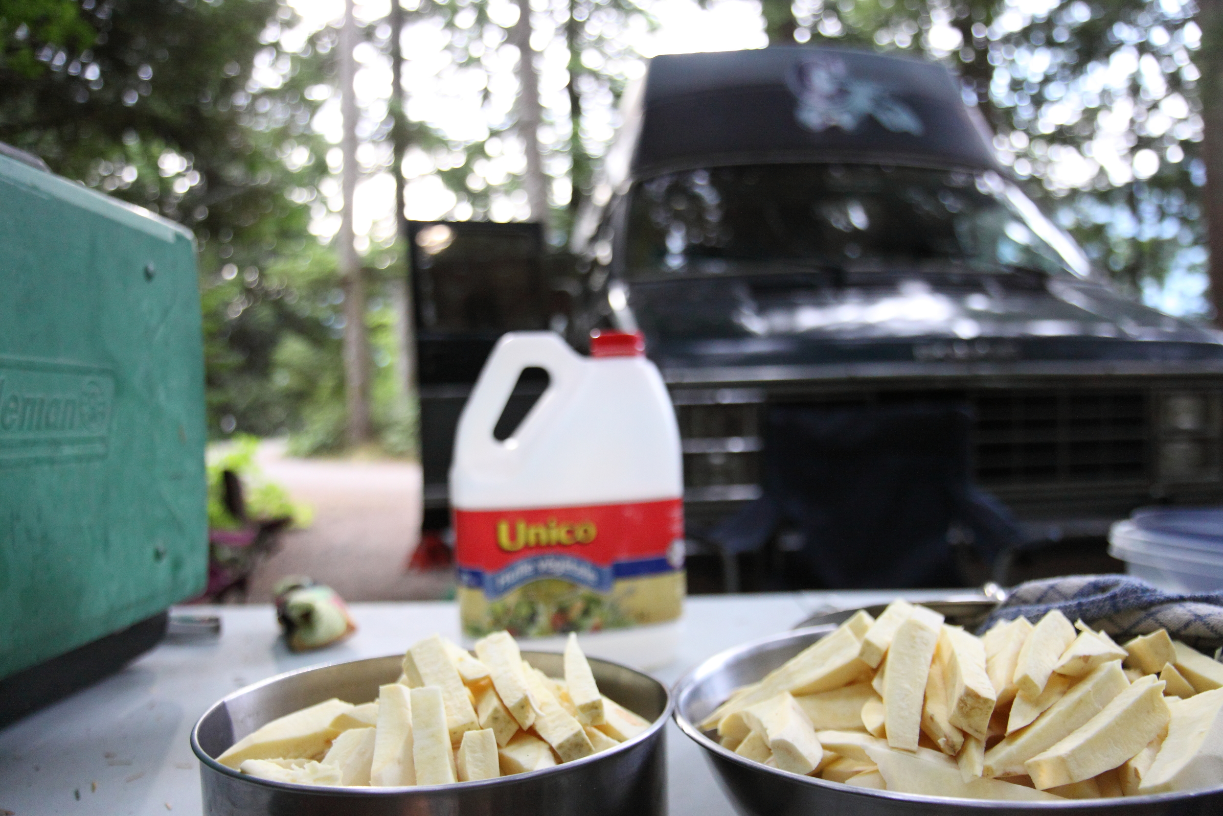The Substrate - Poutine night in the campground at the base of the Chief.