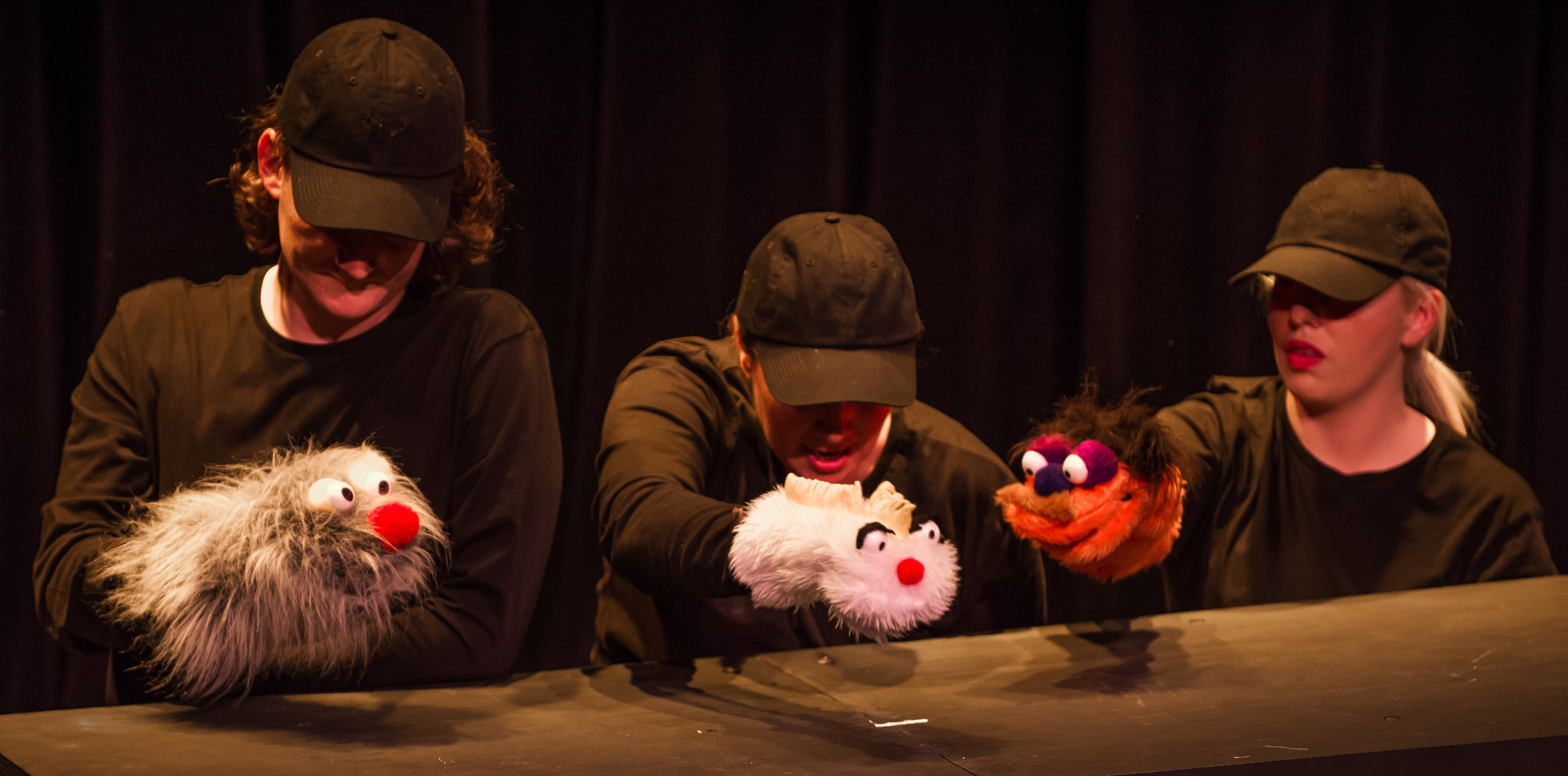 Hairy Puppets Sing.jpg