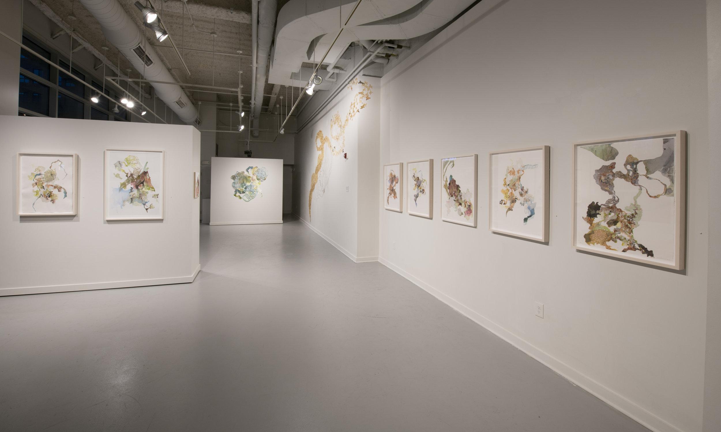 Substance of Matter   Exhibition at Vis Arts in Rockville, MD  2018